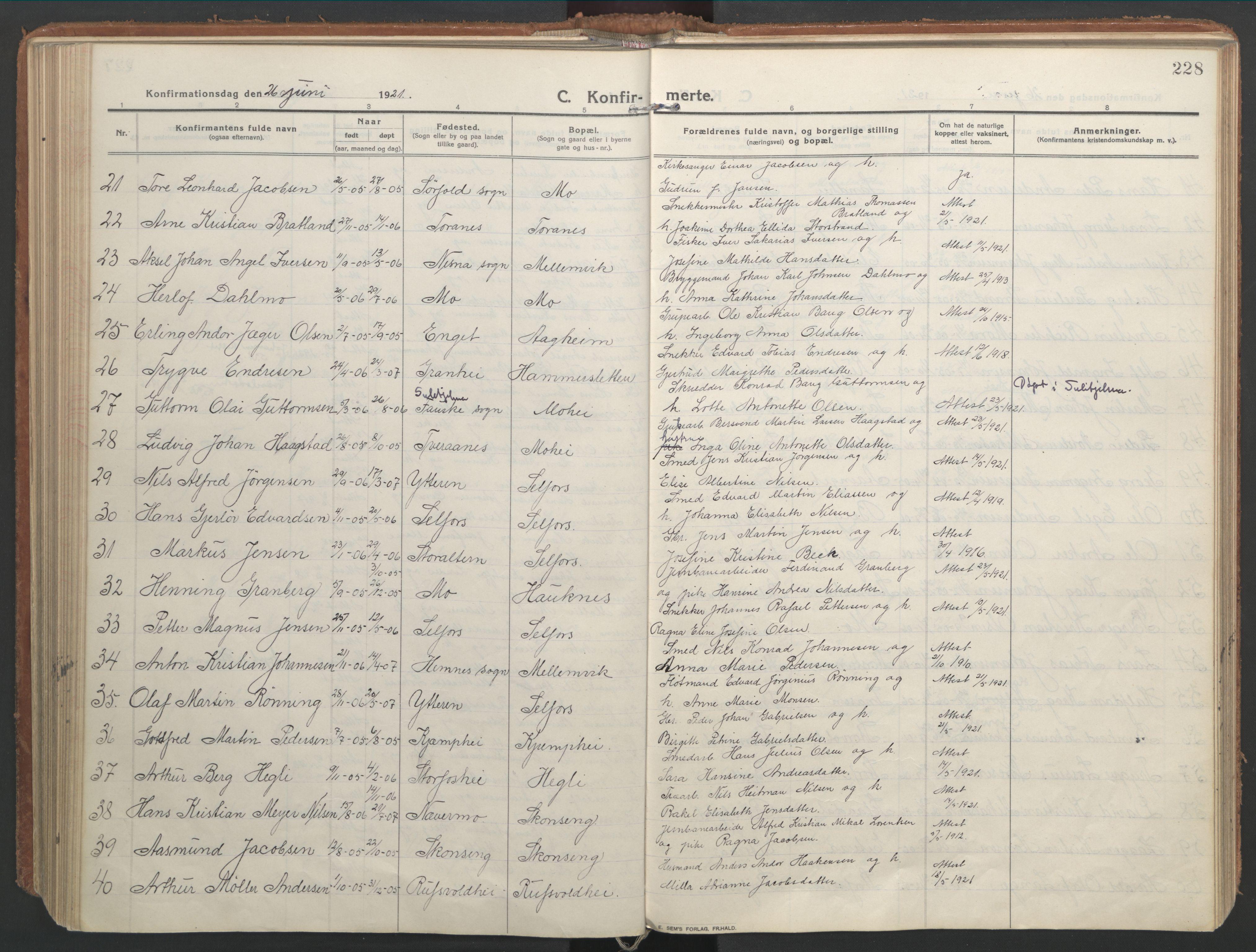 SAT, Ministerialprotokoller, klokkerbøker og fødselsregistre - Nordland, 827/L0404: Ministerialbok nr. 827A16, 1912-1925, s. 228