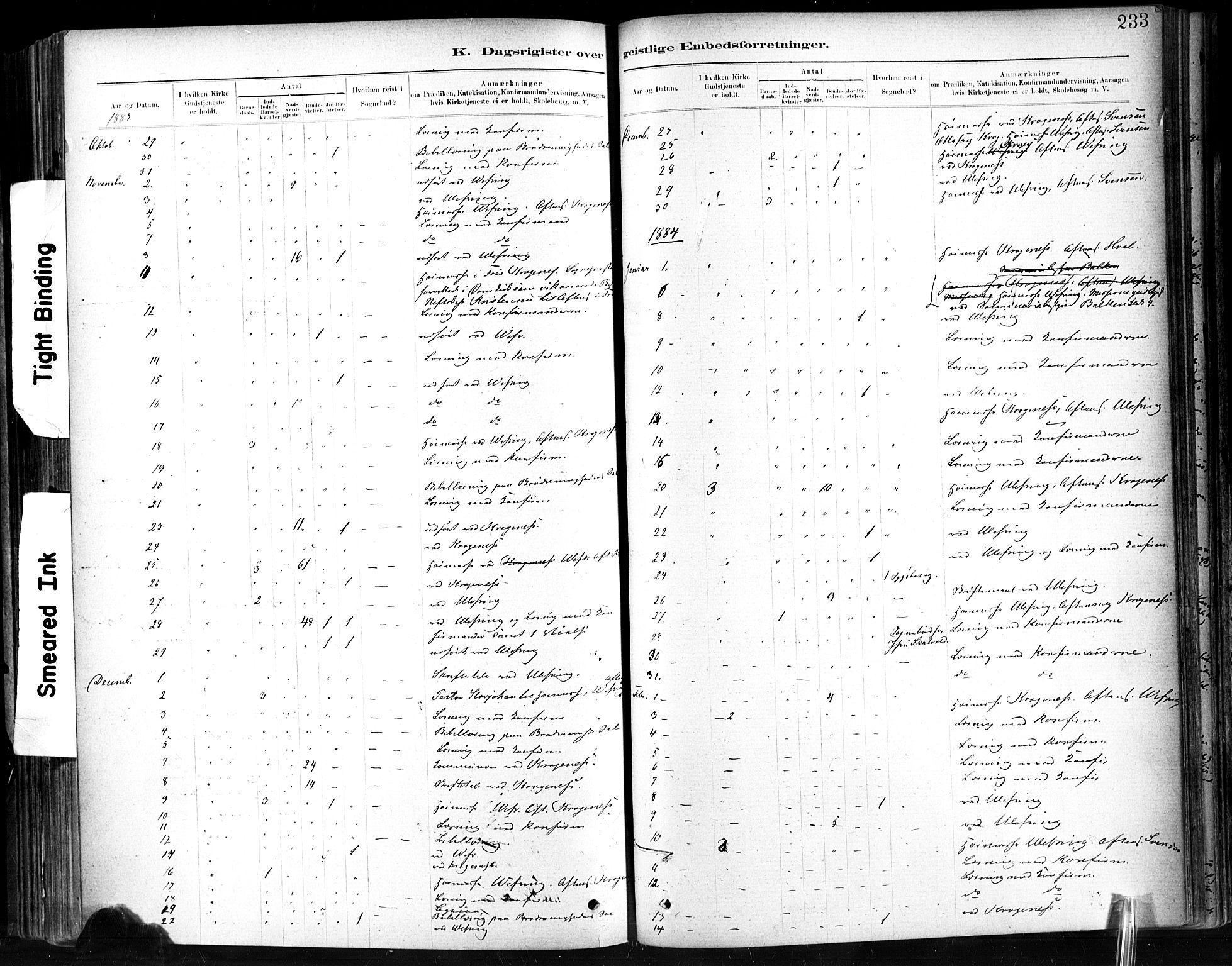 SAT, Ministerialprotokoller, klokkerbøker og fødselsregistre - Sør-Trøndelag, 602/L0120: Ministerialbok nr. 602A18, 1880-1913, s. 233