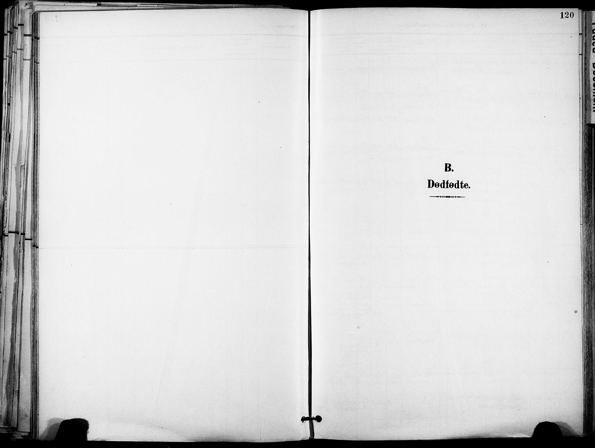SAT, Ministerialprotokoller, klokkerbøker og fødselsregistre - Sør-Trøndelag, 678/L0902: Ministerialbok nr. 678A11, 1895-1911, s. 120
