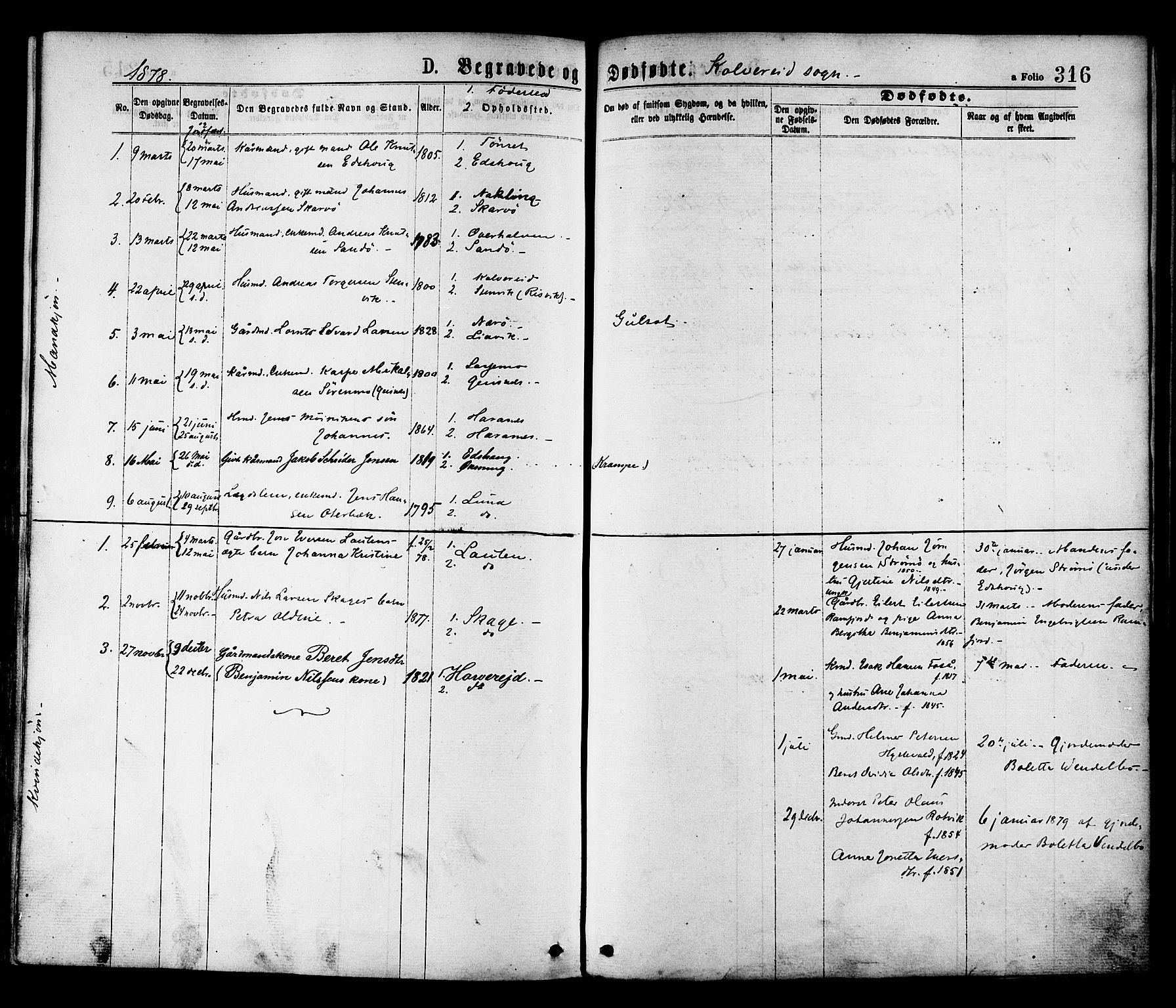 SAT, Ministerialprotokoller, klokkerbøker og fødselsregistre - Nord-Trøndelag, 780/L0642: Ministerialbok nr. 780A07 /1, 1874-1885, s. 316