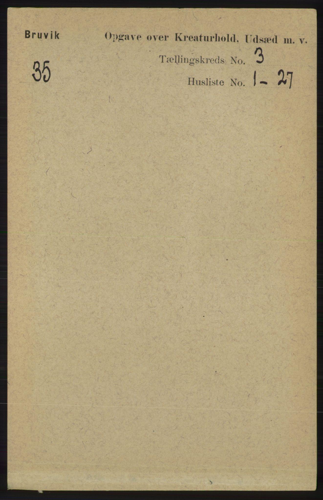 RA, Folketelling 1891 for 1251 Bruvik herred, 1891, s. 4338