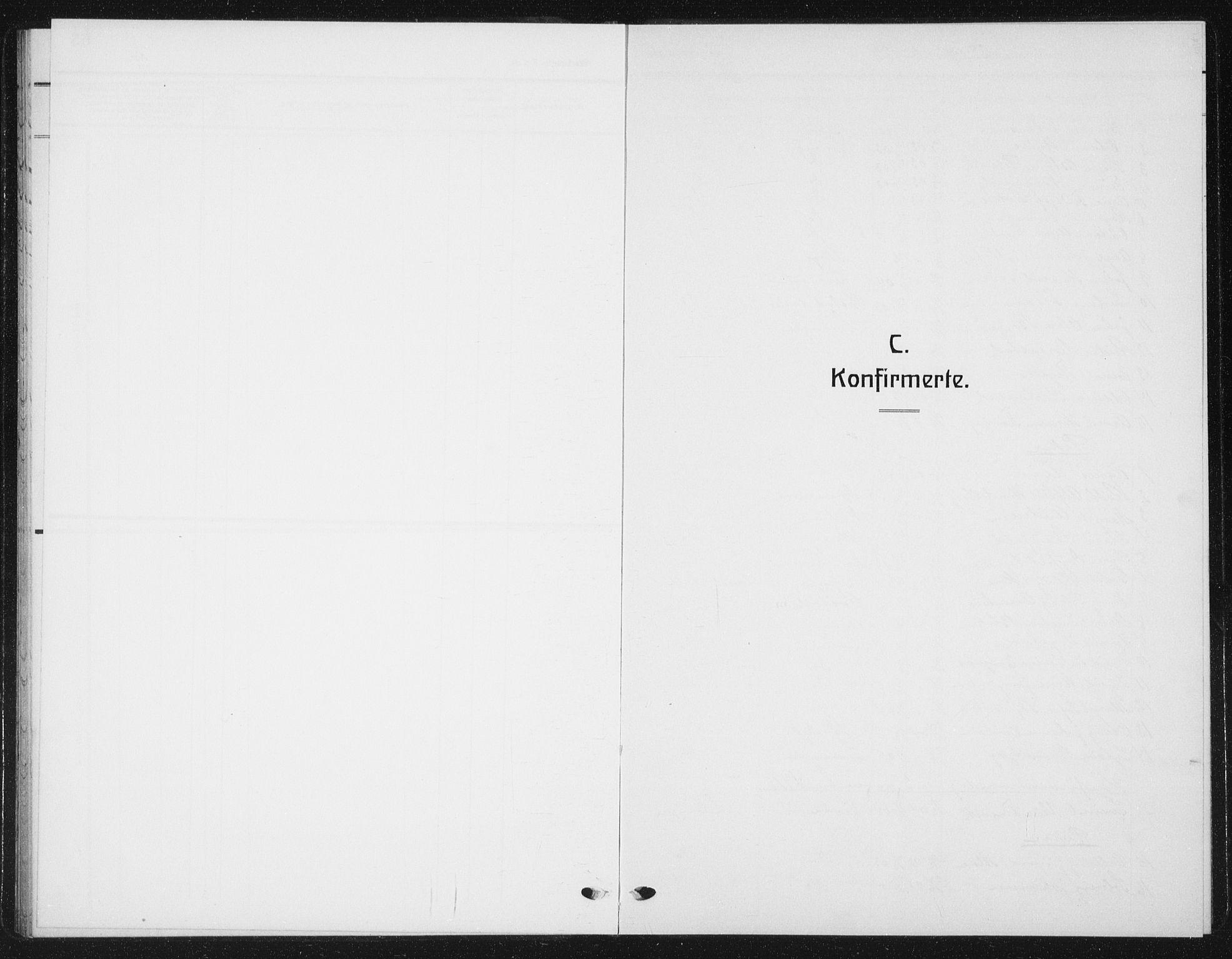 SAT, Ministerialprotokoller, klokkerbøker og fødselsregistre - Nord-Trøndelag, 720/L0193: Klokkerbok nr. 720C02, 1918-1941