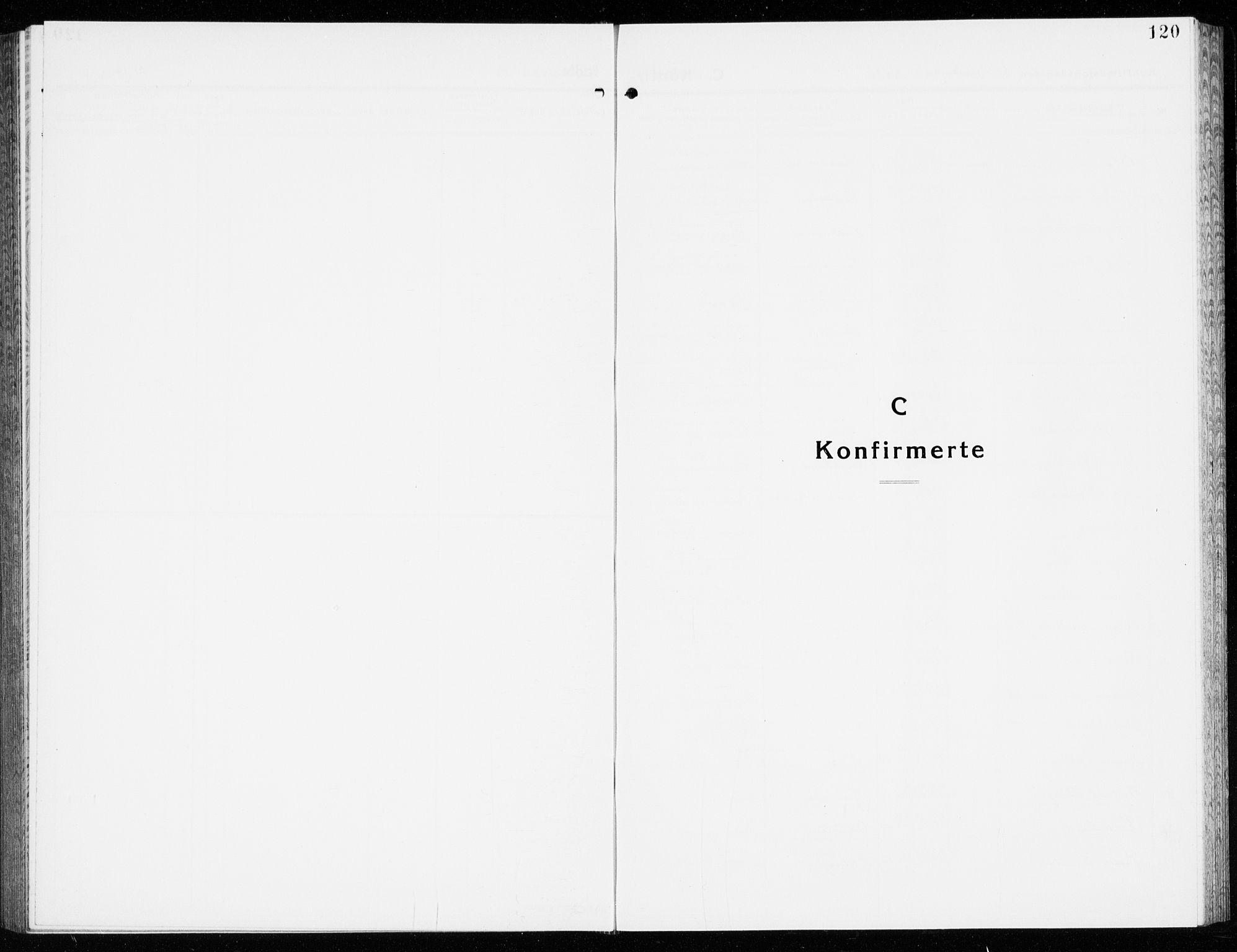 SAKO, Eidanger kirkebøker, G/Ga/L0005: Klokkerbok nr. 5, 1928-1942, s. 120