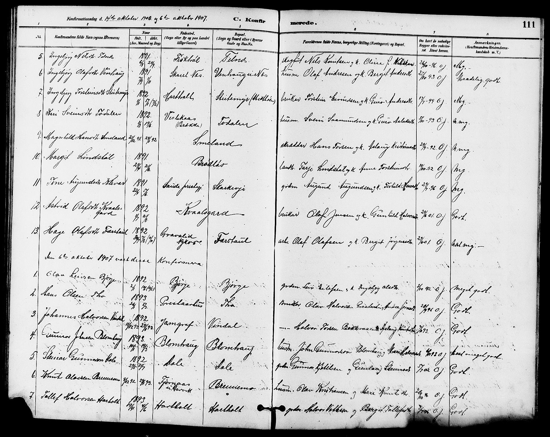 SAKO, Seljord kirkebøker, G/Ga/L0005: Klokkerbok nr. I 5, 1887-1914, s. 111