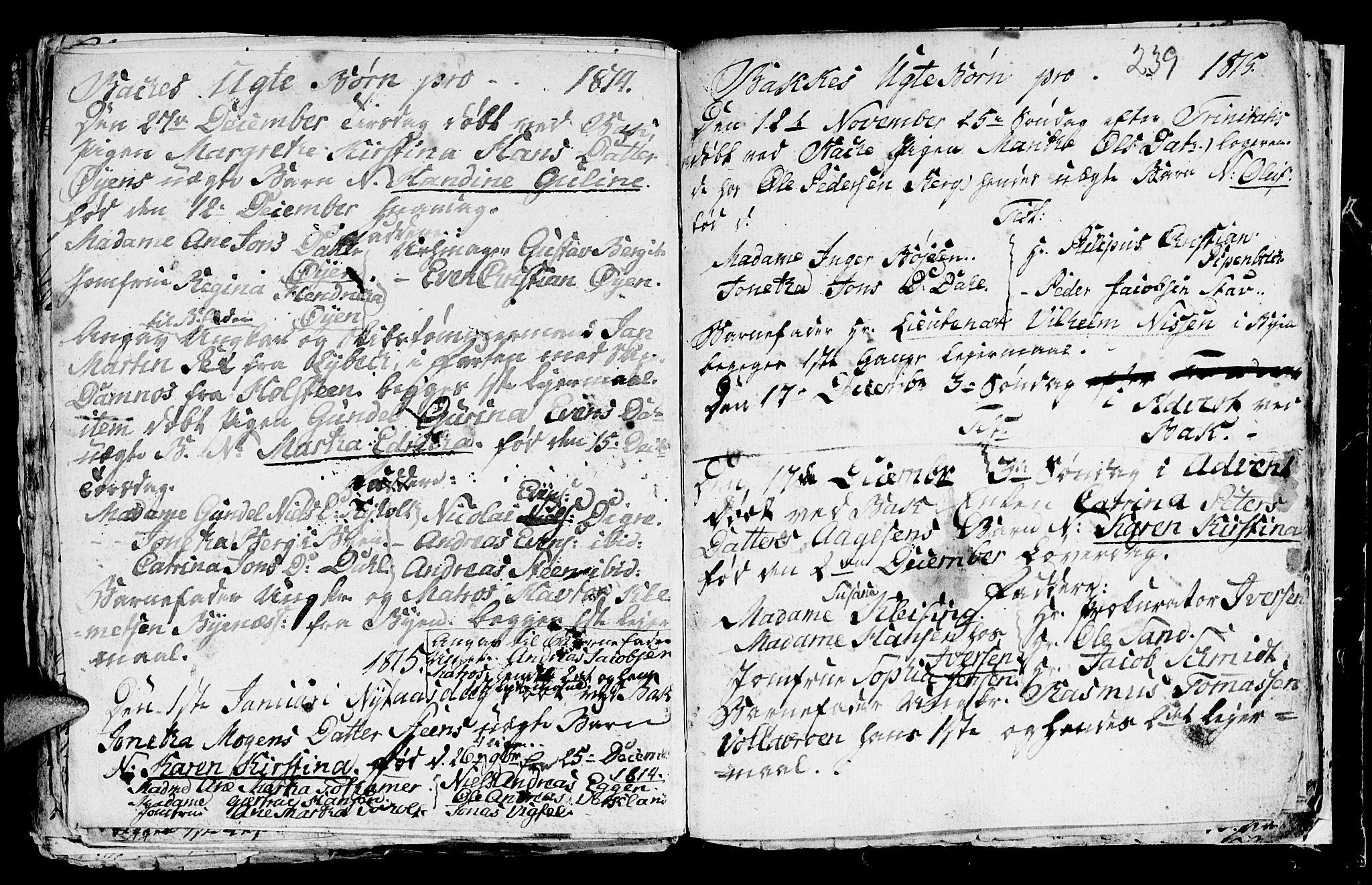 SAT, Ministerialprotokoller, klokkerbøker og fødselsregistre - Sør-Trøndelag, 604/L0218: Klokkerbok nr. 604C01, 1754-1819, s. 239