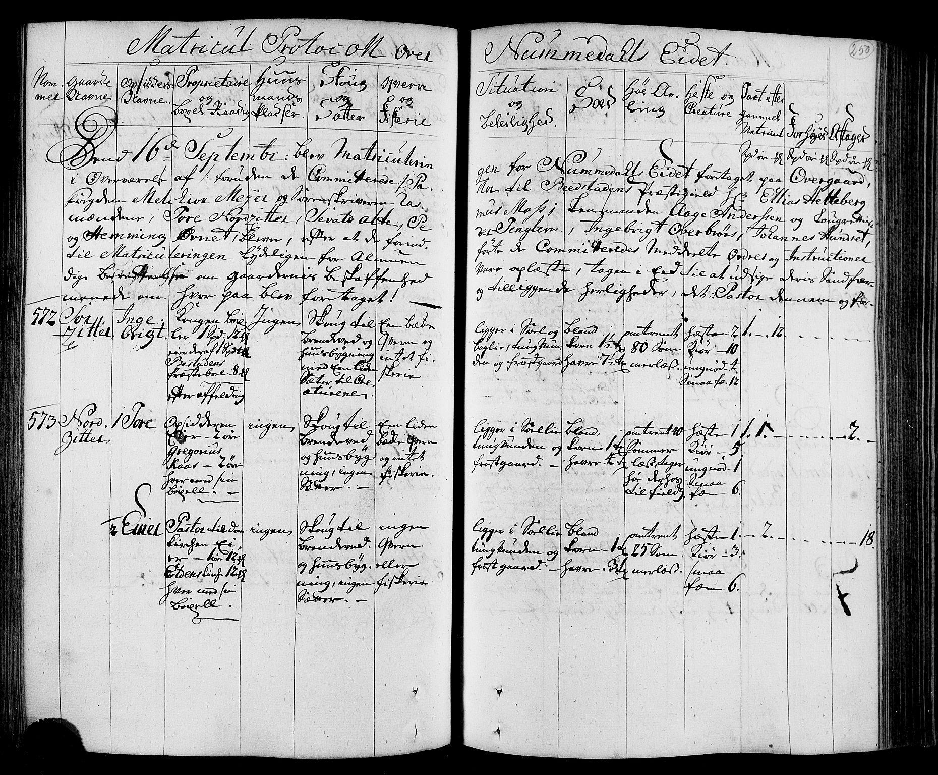 RA, Rentekammeret inntil 1814, Realistisk ordnet avdeling, N/Nb/Nbf/L0168: Namdalen eksaminasjonsprotokoll, 1723, s. 249b-250a