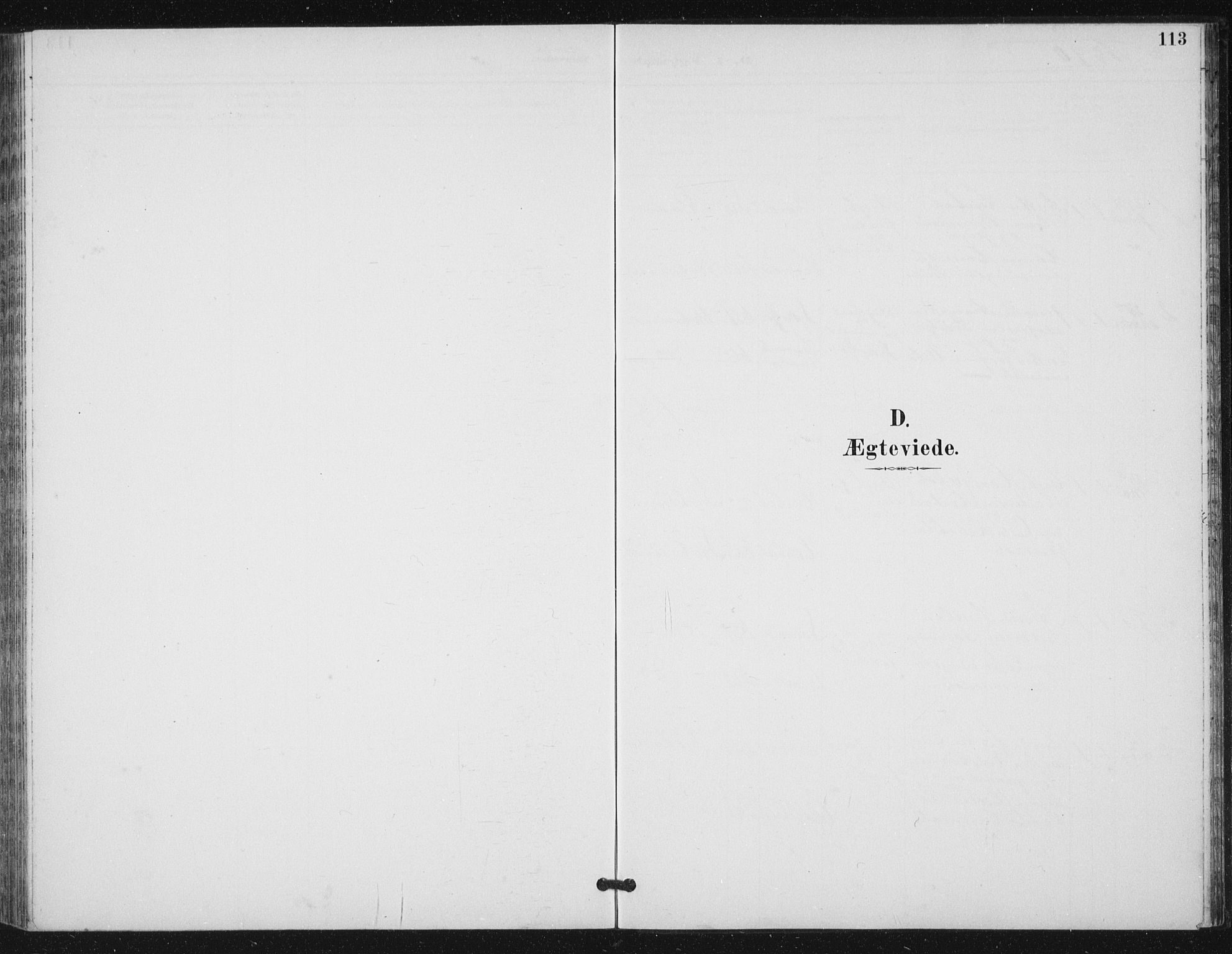SAT, Ministerialprotokoller, klokkerbøker og fødselsregistre - Sør-Trøndelag, 656/L0698: Klokkerbok nr. 656C04, 1890-1904, s. 113