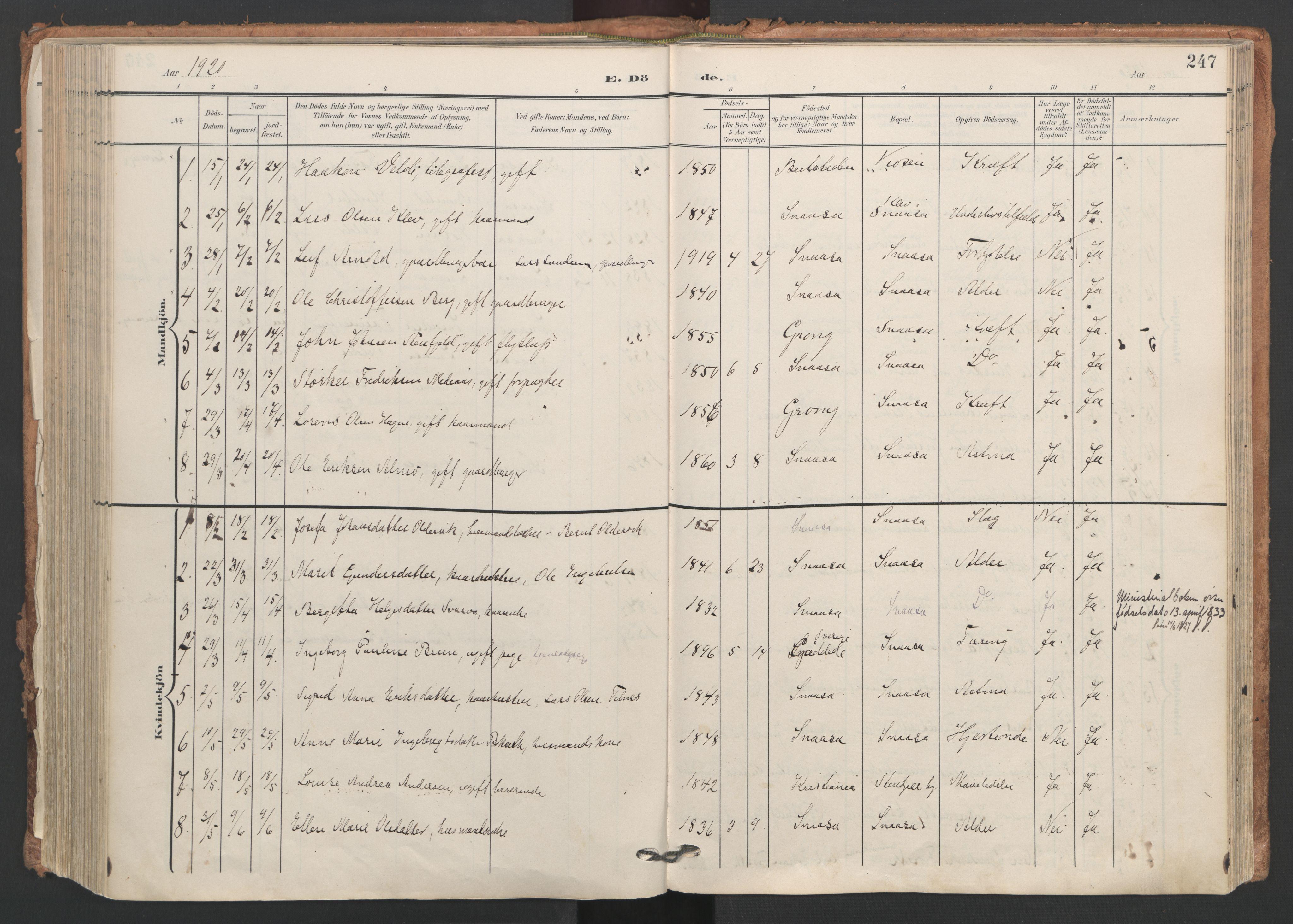SAT, Ministerialprotokoller, klokkerbøker og fødselsregistre - Nord-Trøndelag, 749/L0477: Ministerialbok nr. 749A11, 1902-1927, s. 247
