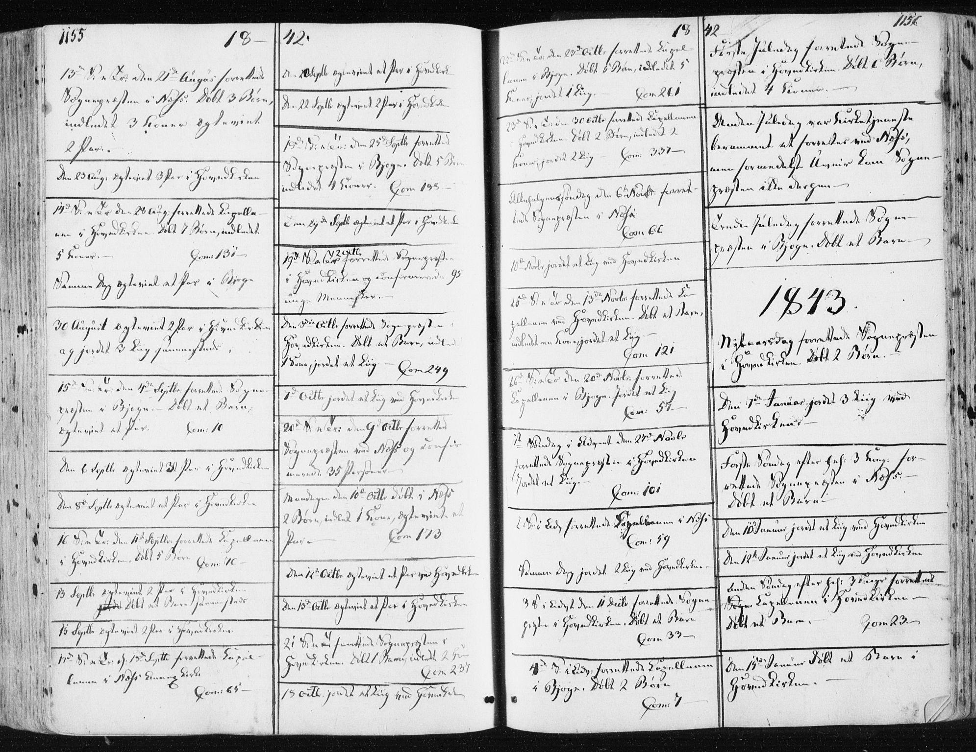 SAT, Ministerialprotokoller, klokkerbøker og fødselsregistre - Sør-Trøndelag, 659/L0736: Ministerialbok nr. 659A06, 1842-1856, s. 1155-1156