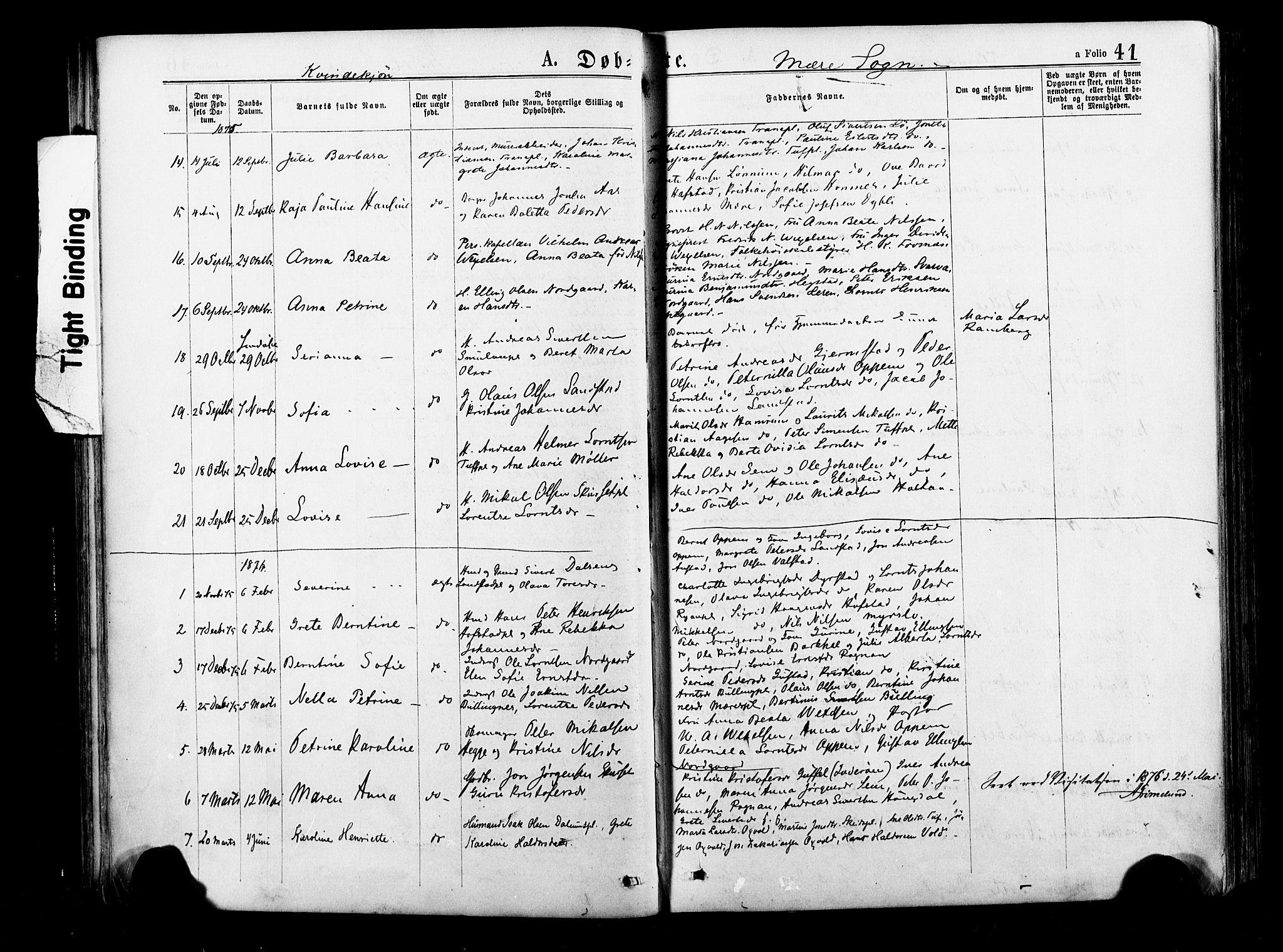 SAT, Ministerialprotokoller, klokkerbøker og fødselsregistre - Nord-Trøndelag, 735/L0348: Ministerialbok nr. 735A09 /1, 1873-1883, s. 41