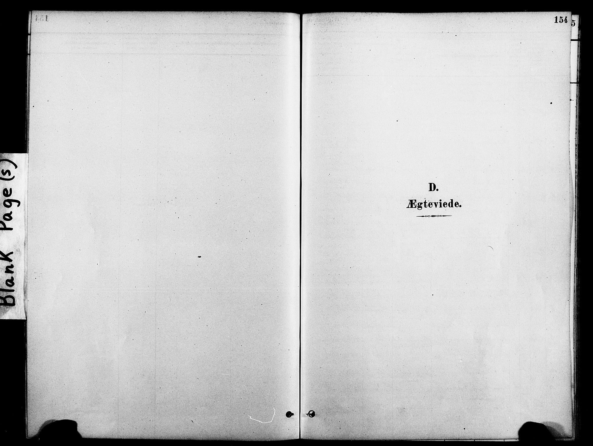 SAT, Ministerialprotokoller, klokkerbøker og fødselsregistre - Nord-Trøndelag, 712/L0100: Ministerialbok nr. 712A01, 1880-1900, s. 154