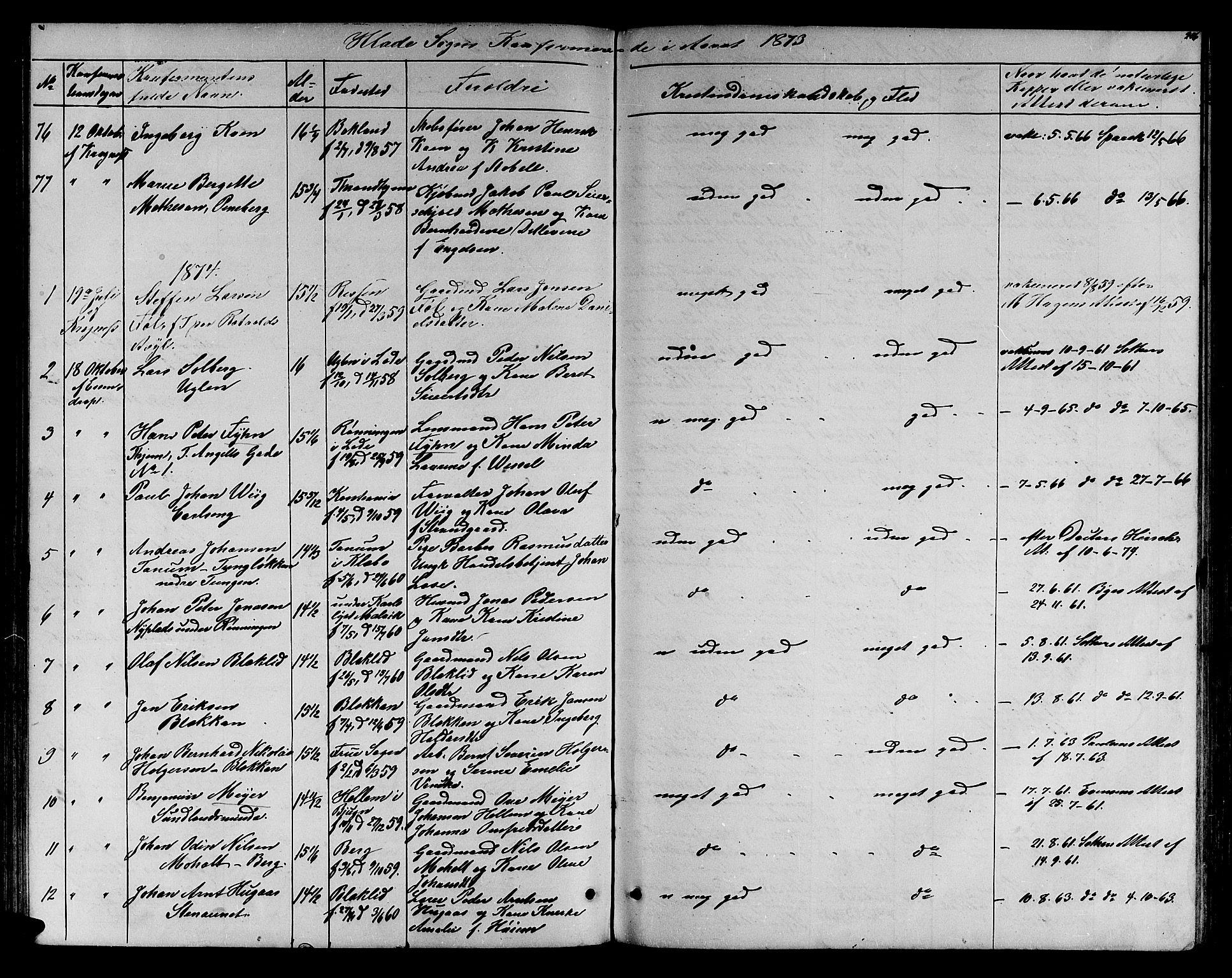 SAT, Ministerialprotokoller, klokkerbøker og fødselsregistre - Sør-Trøndelag, 606/L0311: Klokkerbok nr. 606C07, 1860-1877, s. 206