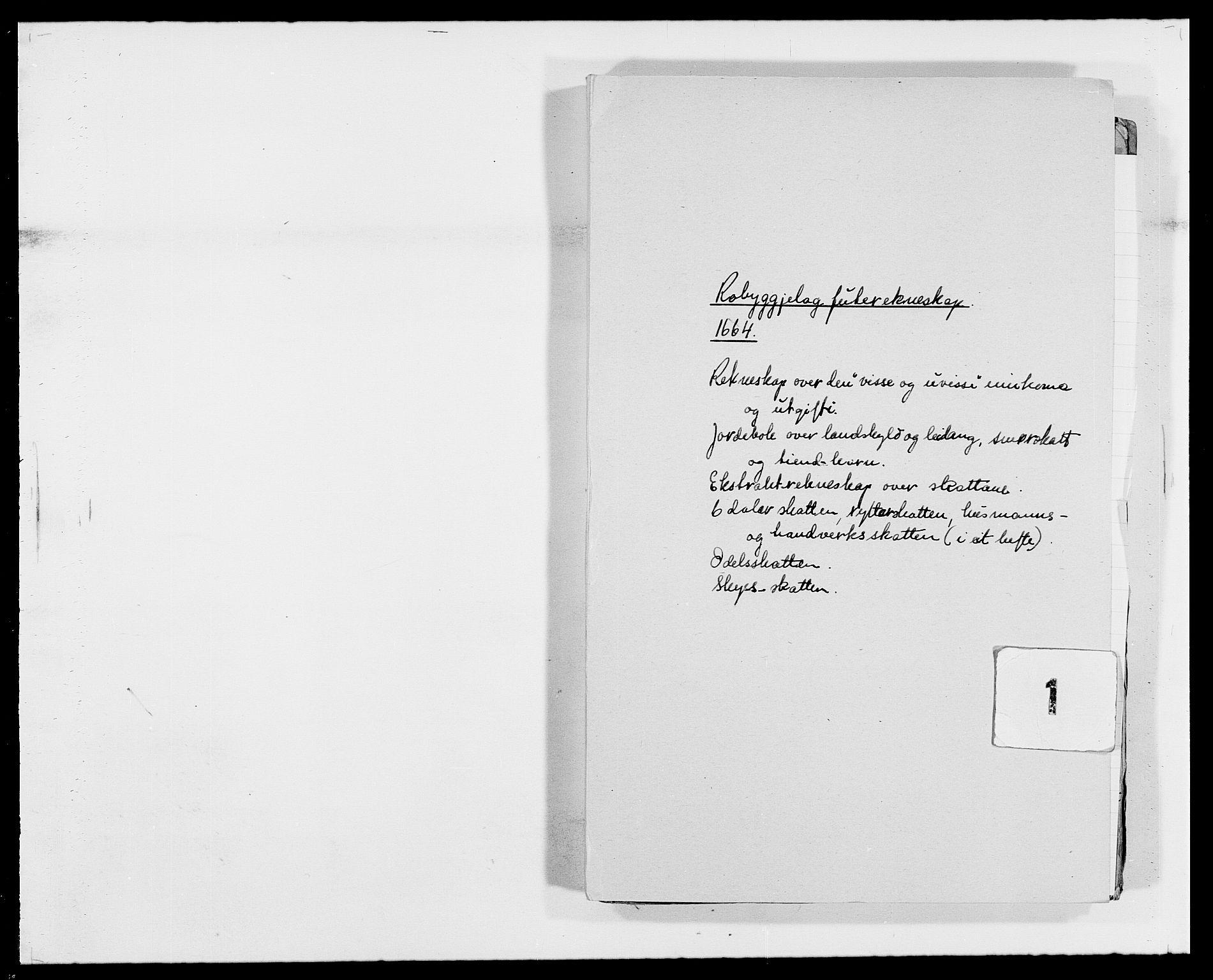 RA, Rentekammeret inntil 1814, Reviderte regnskaper, Fogderegnskap, R40/L2431: Fogderegnskap Råbyggelag, 1664-1668, s. 1
