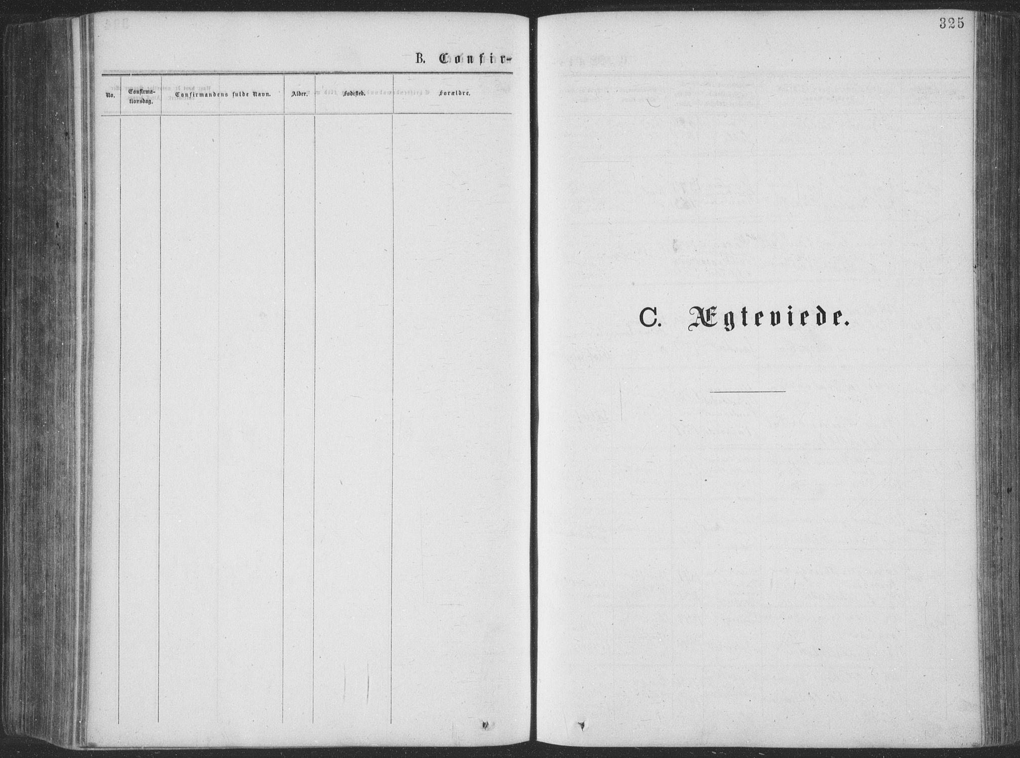 SAKO, Seljord kirkebøker, F/Fa/L0014: Ministerialbok nr. I 14, 1877-1886, s. 325