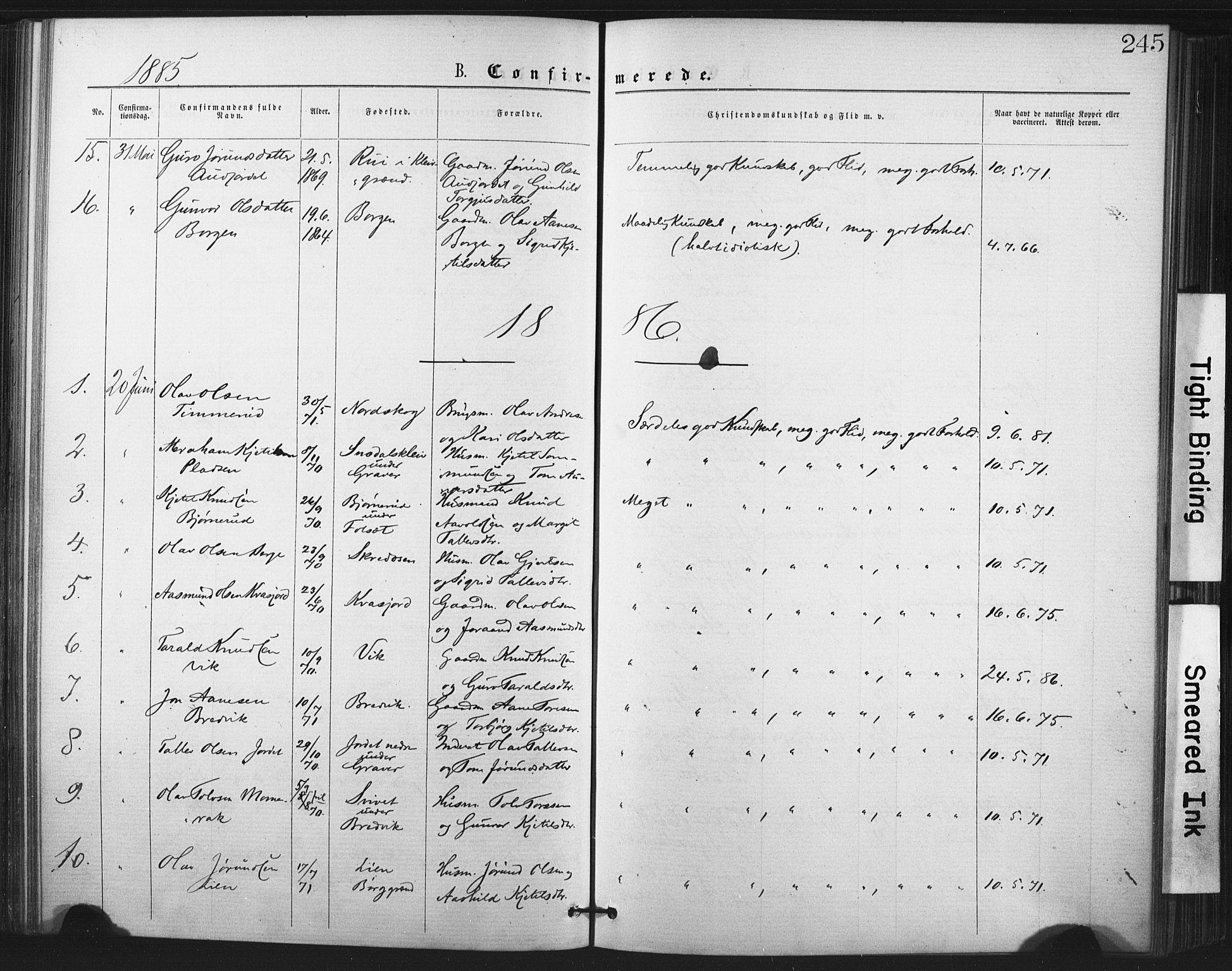 SAKO, Fyresdal kirkebøker, F/Fa/L0006: Ministerialbok nr. I 6, 1872-1886, s. 245