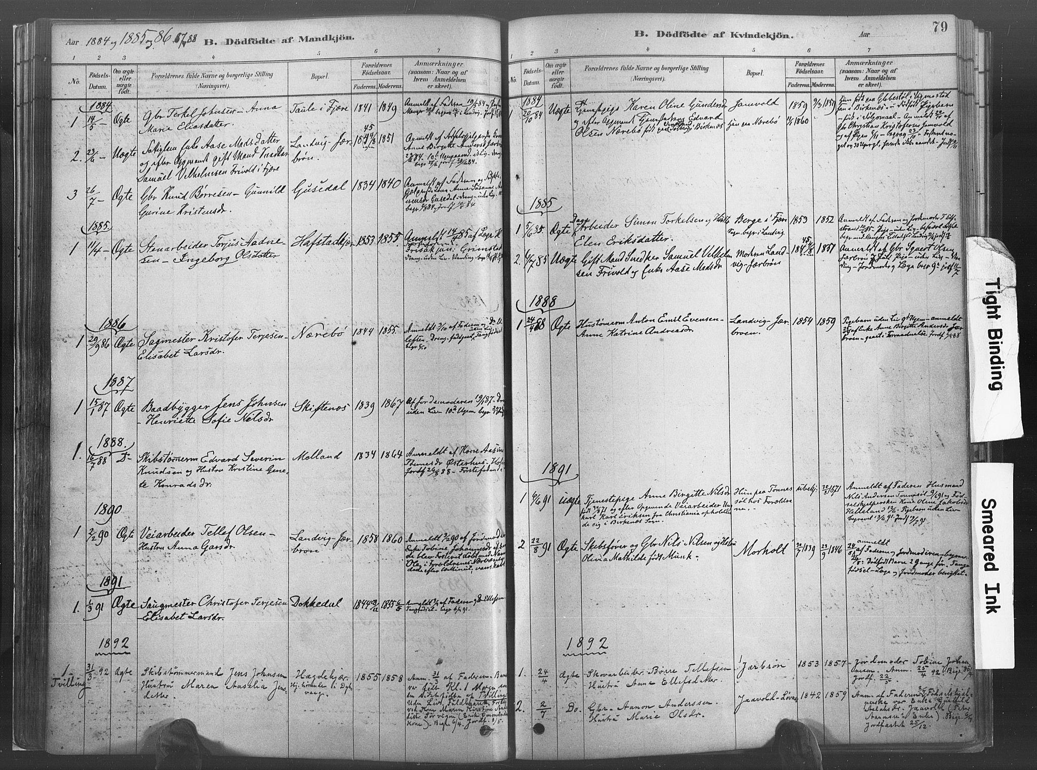 SAK, Hommedal sokneprestkontor, F/Fa/Fab/L0006: Ministerialbok nr. A 6, 1878-1897, s. 79