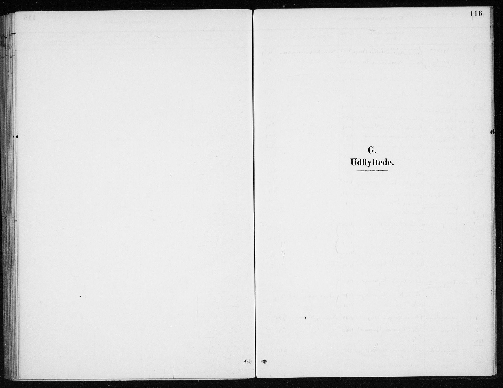 SAB, Kvinnherad Sokneprestembete, H/Haa: Ministerialbok nr. E 1, 1887-1912, s. 116