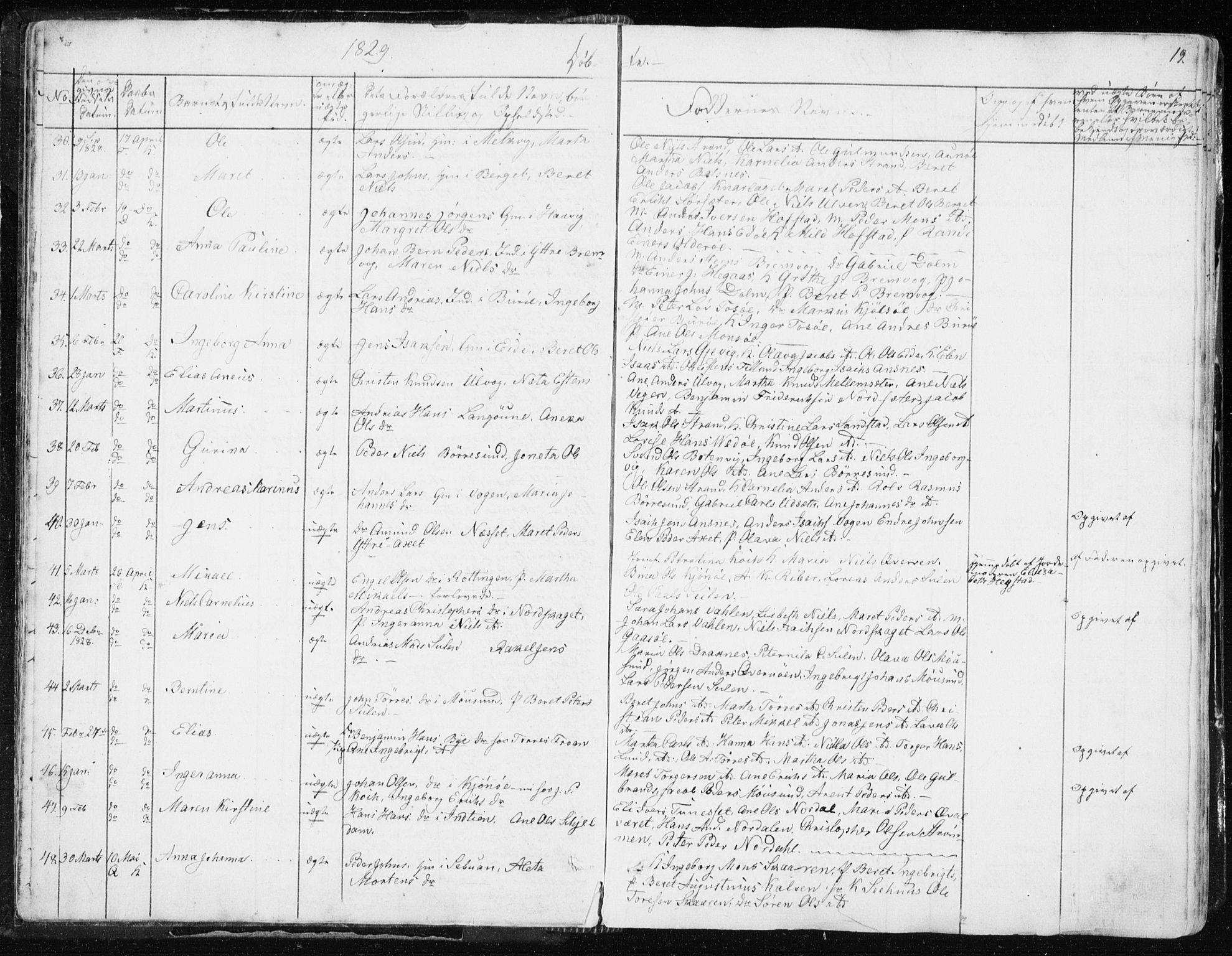 SAT, Ministerialprotokoller, klokkerbøker og fødselsregistre - Sør-Trøndelag, 634/L0528: Ministerialbok nr. 634A04, 1827-1842, s. 19