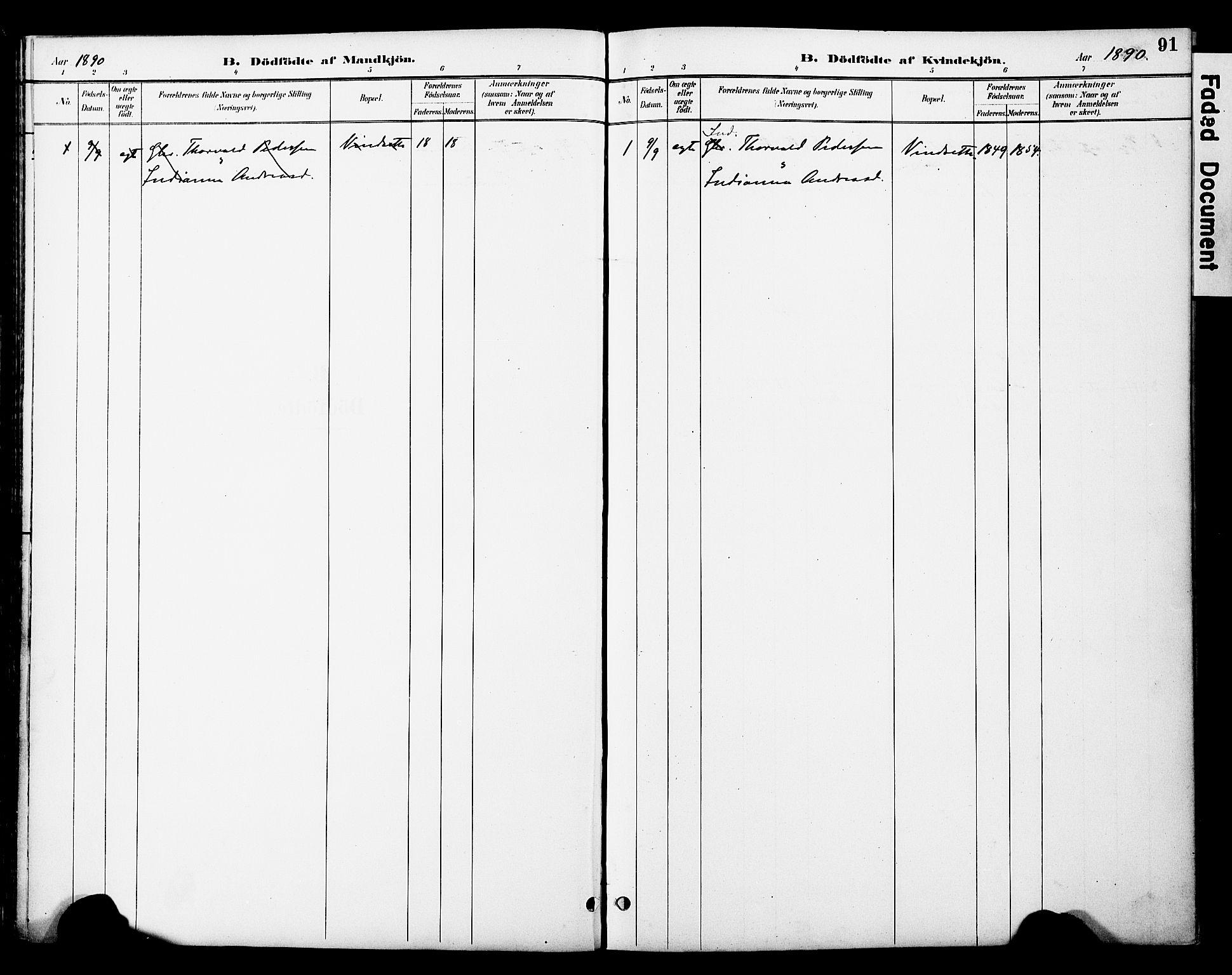 SAT, Ministerialprotokoller, klokkerbøker og fødselsregistre - Nord-Trøndelag, 774/L0628: Ministerialbok nr. 774A02, 1887-1903, s. 91