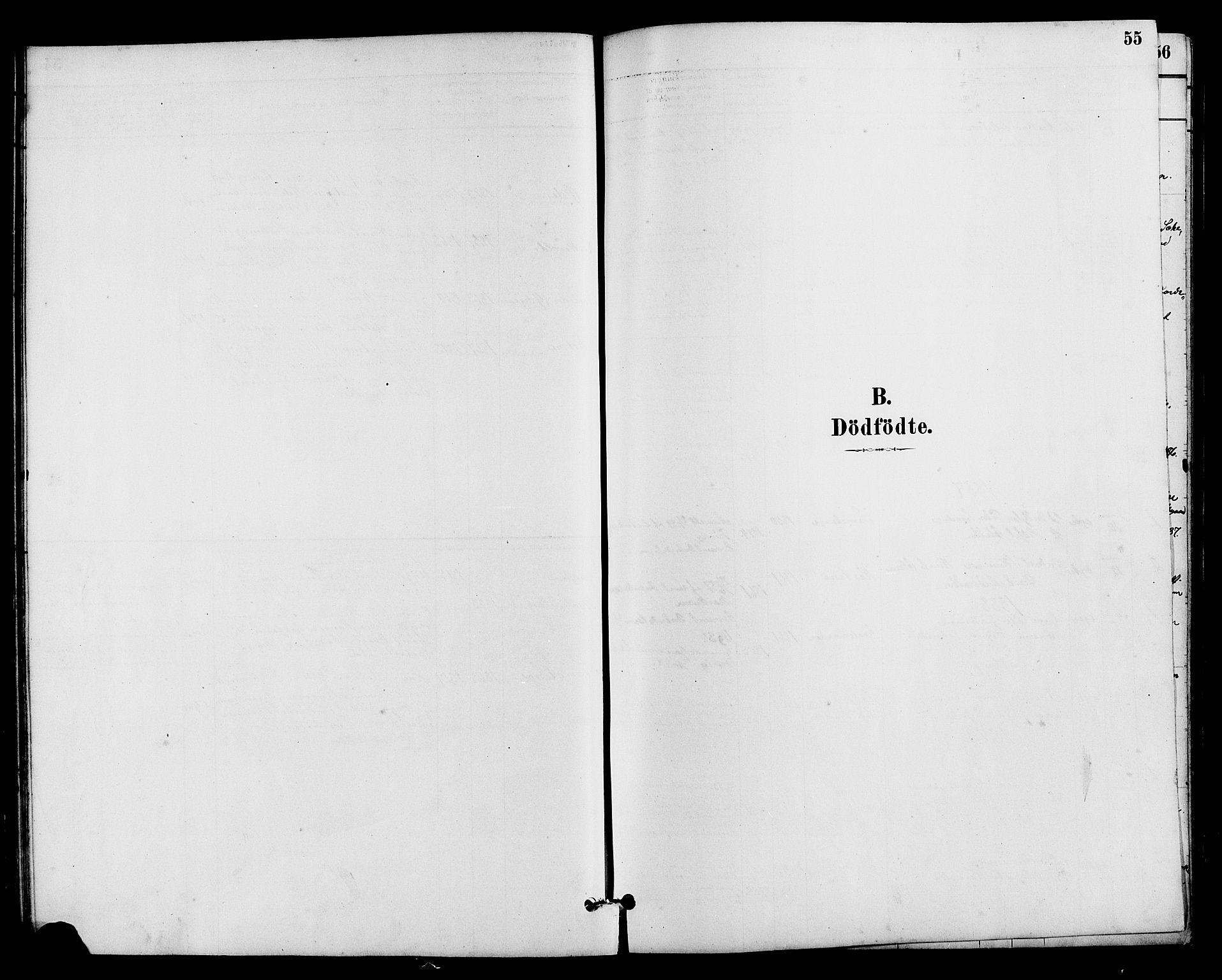 SAH, Vestre Slidre prestekontor, Klokkerbok nr. 5, 1881-1913, s. 55