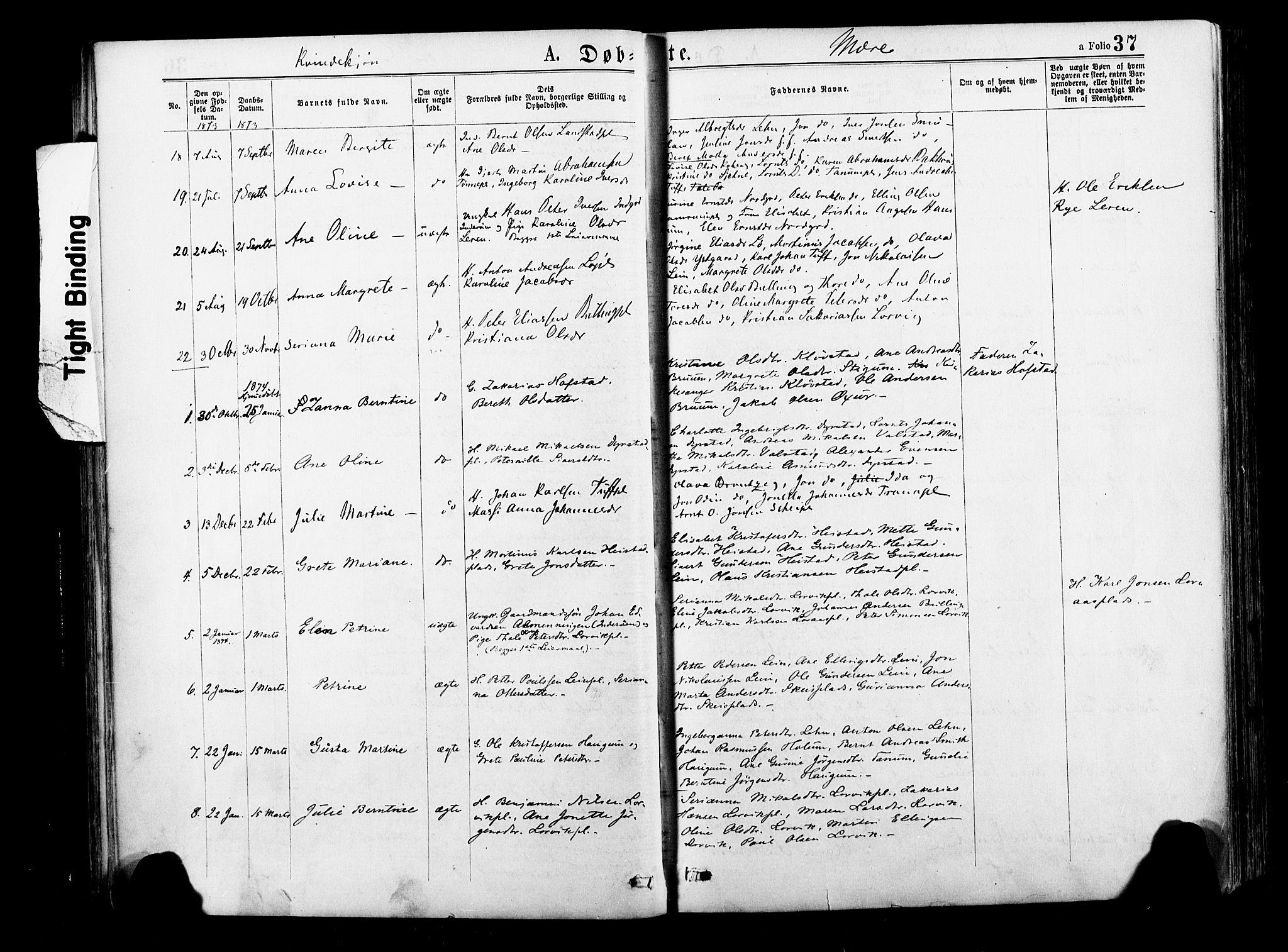 SAT, Ministerialprotokoller, klokkerbøker og fødselsregistre - Nord-Trøndelag, 735/L0348: Ministerialbok nr. 735A09 /1, 1873-1883, s. 37