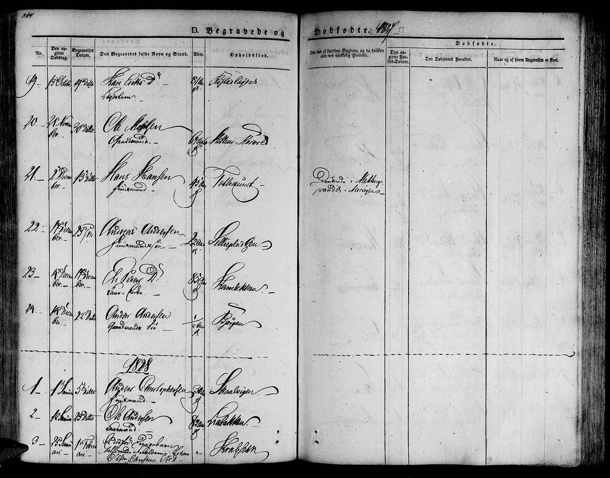 SAT, Ministerialprotokoller, klokkerbøker og fødselsregistre - Nord-Trøndelag, 701/L0006: Ministerialbok nr. 701A06, 1825-1841, s. 247