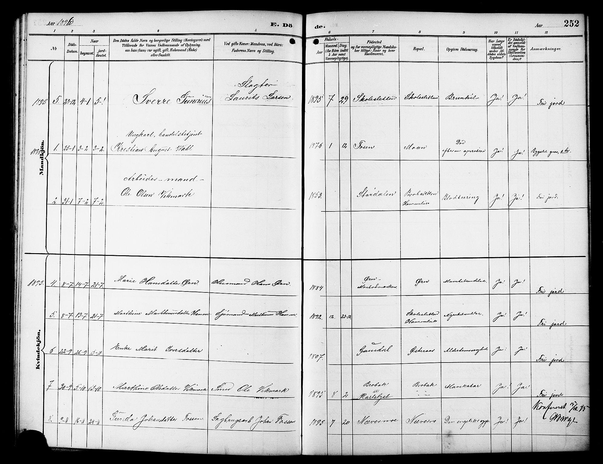 SAT, Ministerialprotokoller, klokkerbøker og fødselsregistre - Sør-Trøndelag, 617/L0431: Klokkerbok nr. 617C01, 1889-1910, s. 252