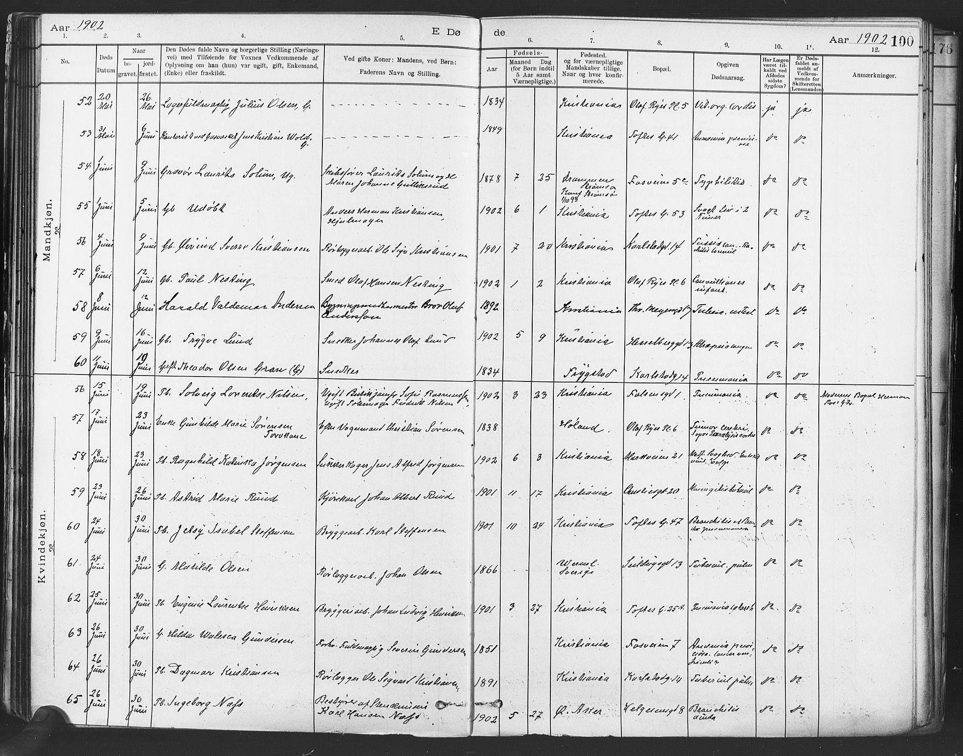 SAO, Paulus prestekontor Kirkebøker, F/Fa/L0012: Ministerialbok nr. 12, 1897-1908, s. 100