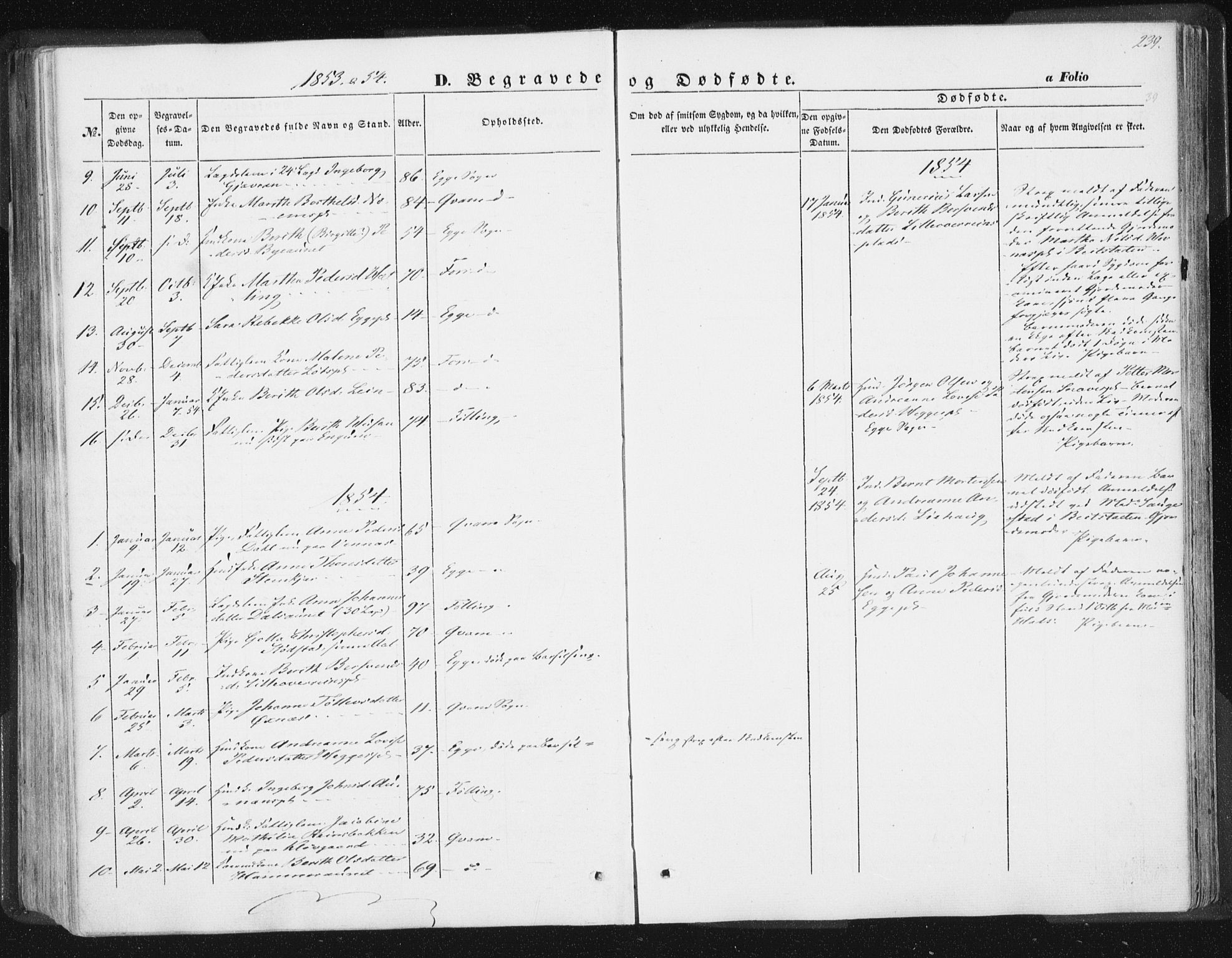 SAT, Ministerialprotokoller, klokkerbøker og fødselsregistre - Nord-Trøndelag, 746/L0446: Ministerialbok nr. 746A05, 1846-1859, s. 239