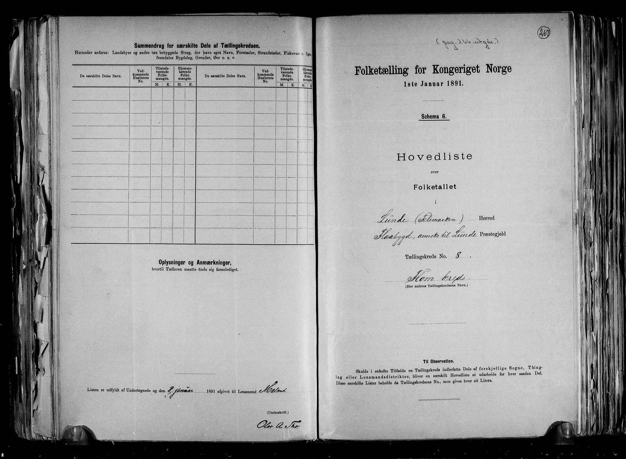 RA, Folketelling 1891 for 0820 Lunde herred, 1891, s. 19