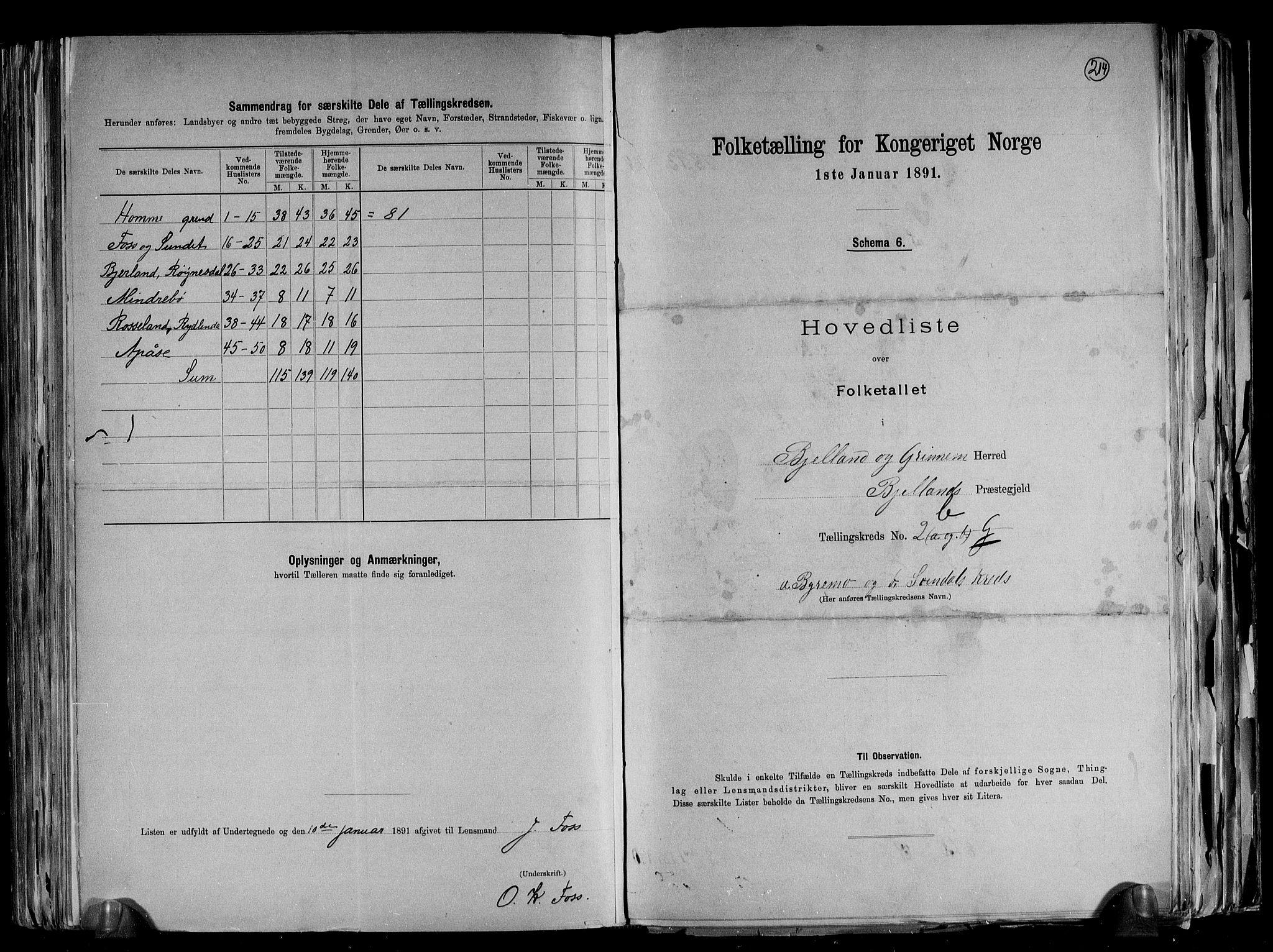 RA, Folketelling 1891 for 1024 Bjelland og Grindheim herred, 1891, s. 12