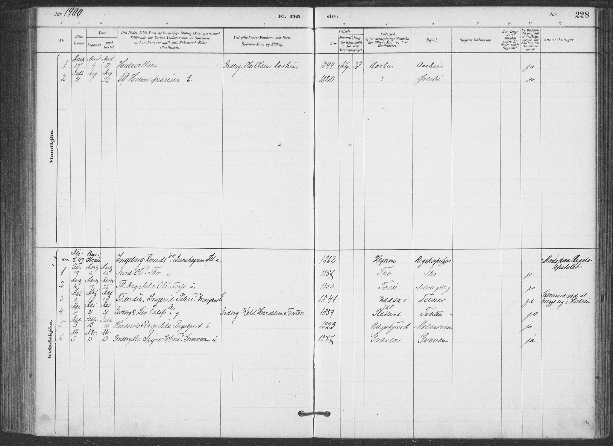 SAKO, Hjartdal kirkebøker, F/Fa/L0010: Ministerialbok nr. I 10, 1880-1929, s. 228