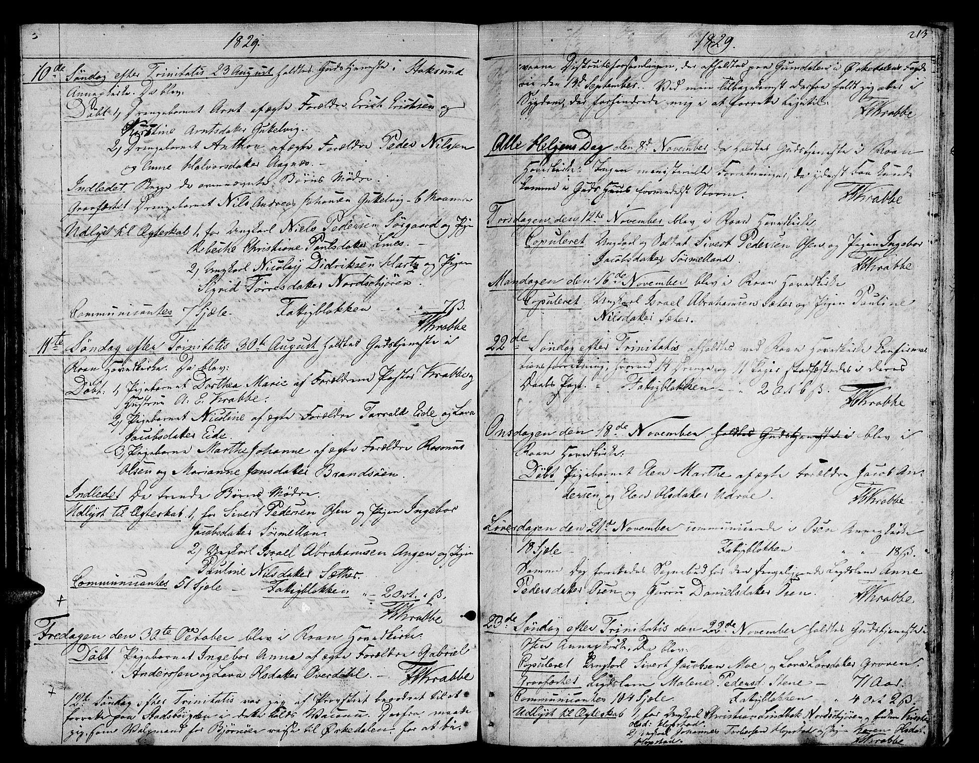 SAT, Ministerialprotokoller, klokkerbøker og fødselsregistre - Sør-Trøndelag, 657/L0701: Ministerialbok nr. 657A02, 1802-1831, s. 213