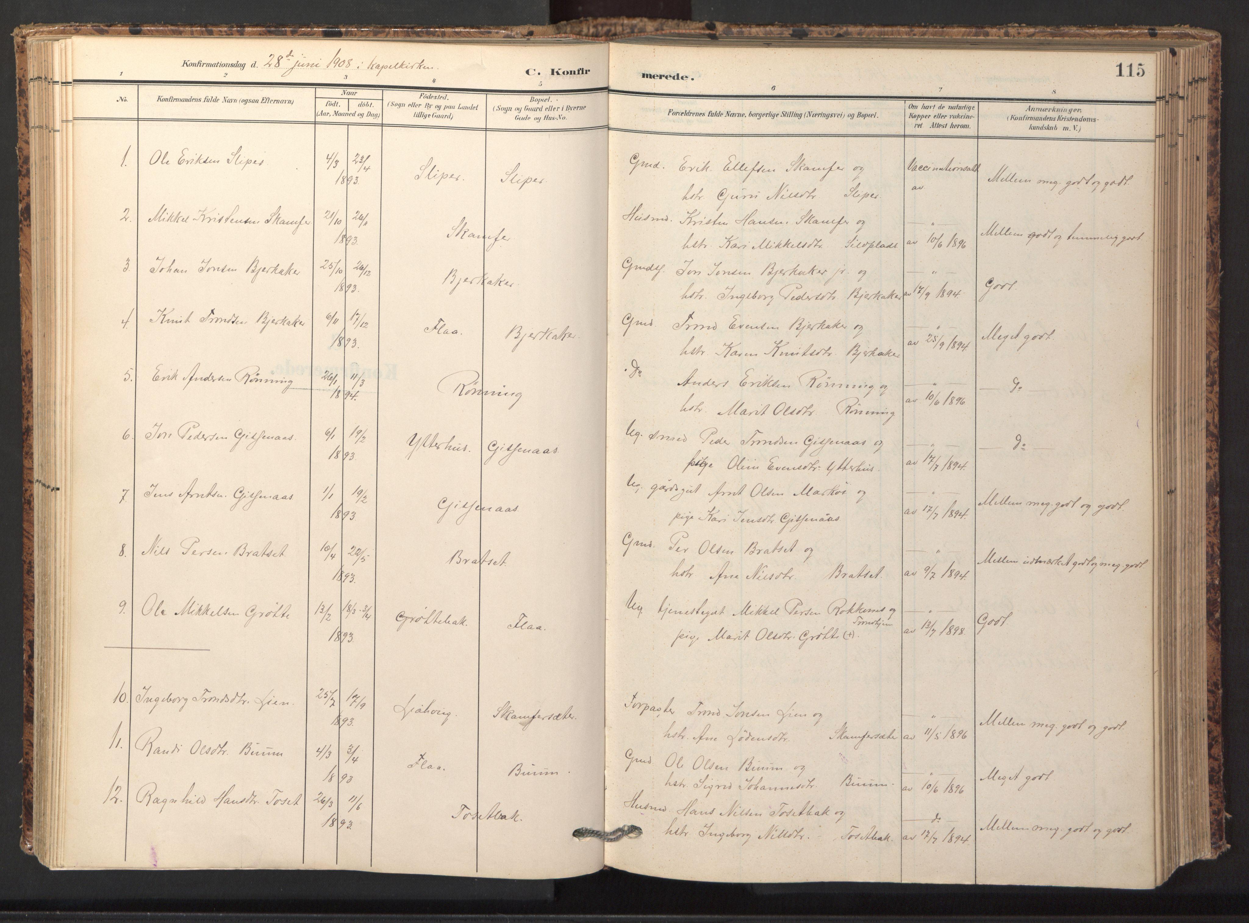 SAT, Ministerialprotokoller, klokkerbøker og fødselsregistre - Sør-Trøndelag, 674/L0873: Ministerialbok nr. 674A05, 1908-1923, s. 115