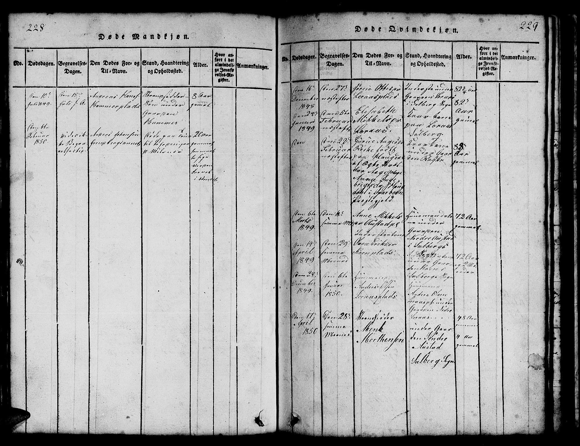 SAT, Ministerialprotokoller, klokkerbøker og fødselsregistre - Nord-Trøndelag, 731/L0310: Klokkerbok nr. 731C01, 1816-1874, s. 228-229