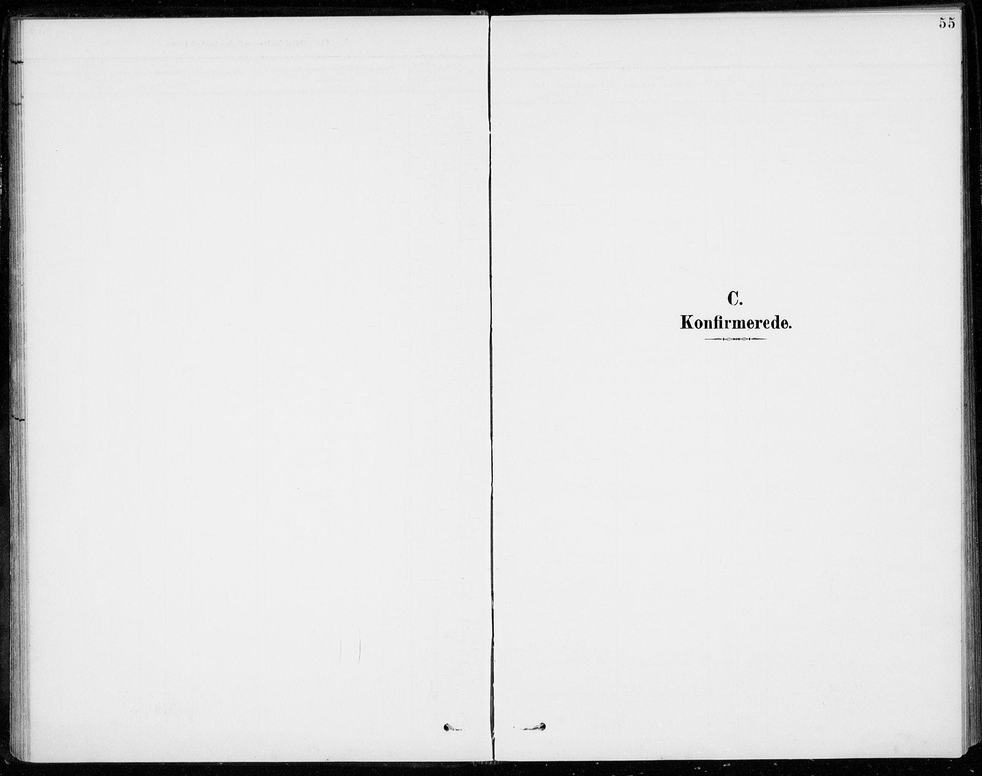 SAKO, Sigdal kirkebøker, F/Fc/L0002: Ministerialbok nr. III 2, 1894-1911, s. 55