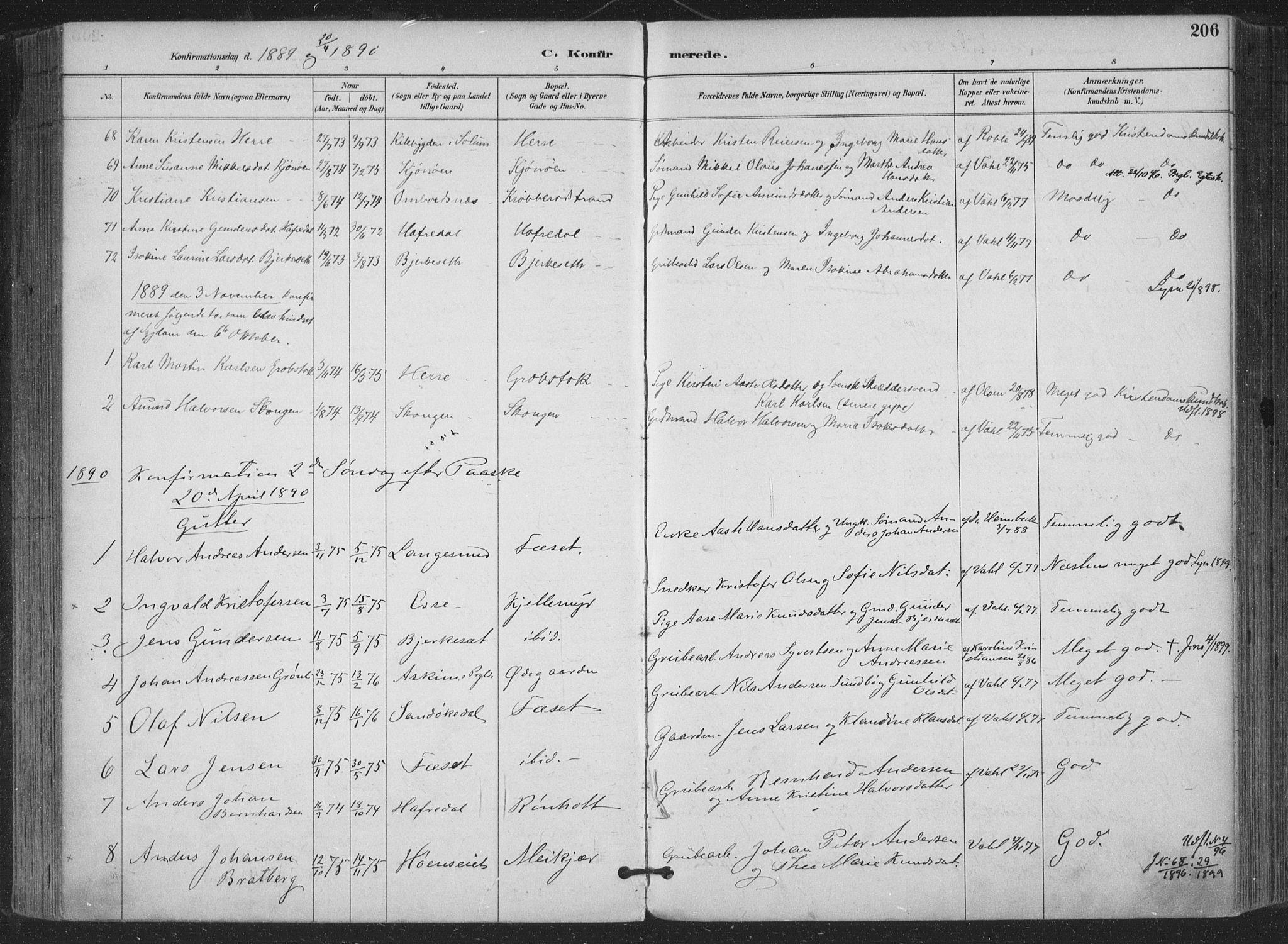 SAKO, Bamble kirkebøker, F/Fa/L0008: Ministerialbok nr. I 8, 1888-1900, s. 206