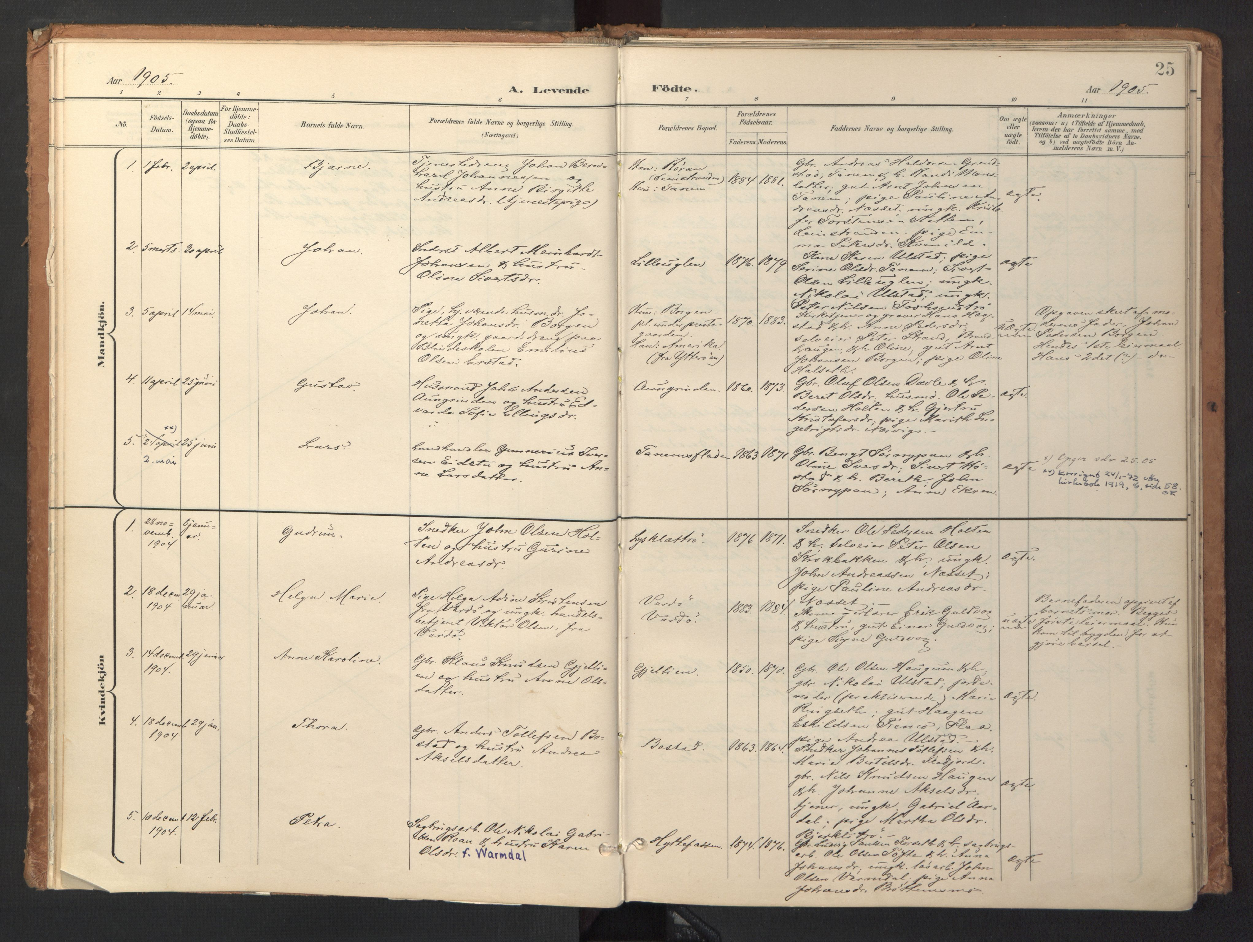 SAT, Ministerialprotokoller, klokkerbøker og fødselsregistre - Sør-Trøndelag, 618/L0448: Ministerialbok nr. 618A11, 1898-1916, s. 25