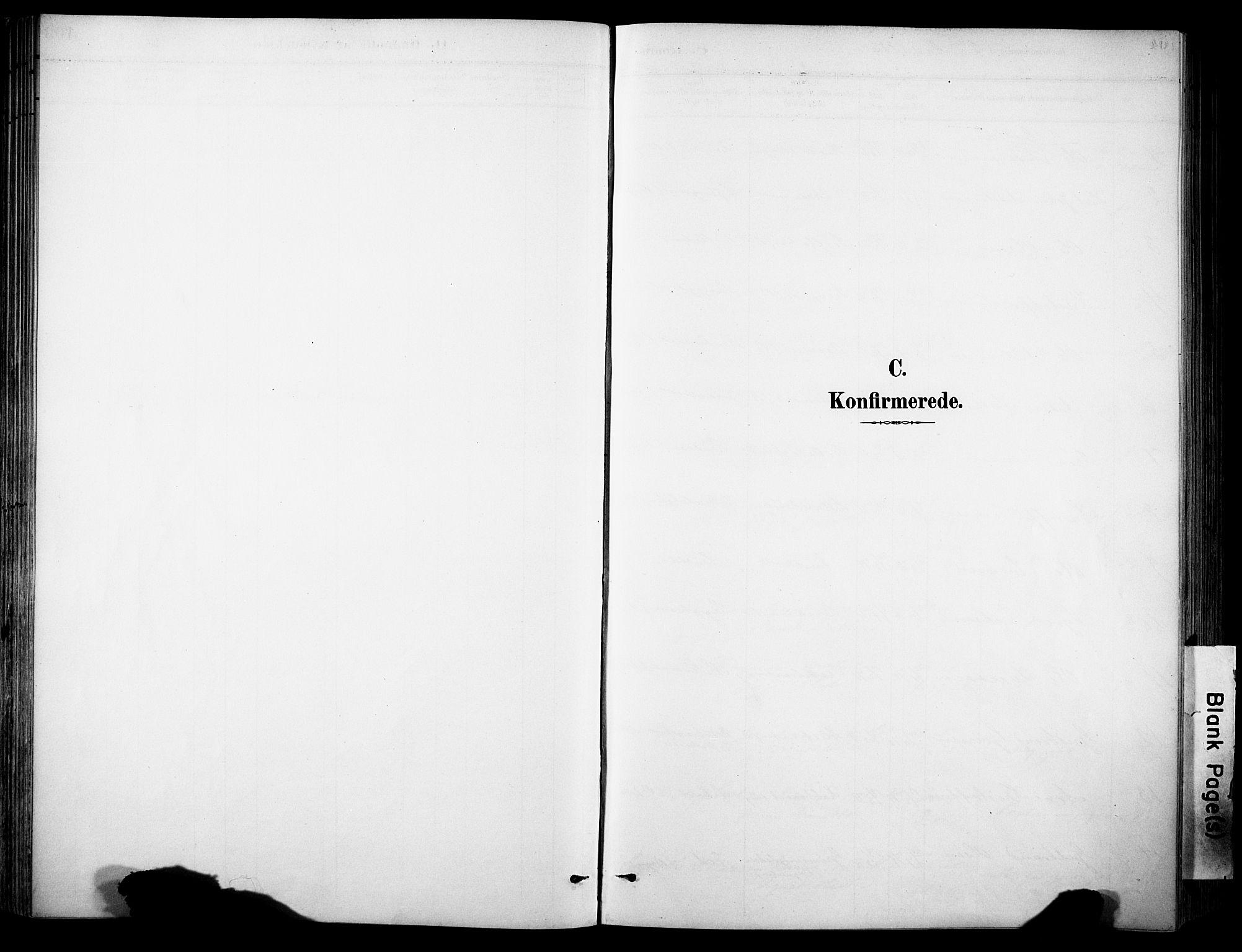 SAH, Sør-Aurdal prestekontor, Ministerialbok nr. 9, 1886-1906
