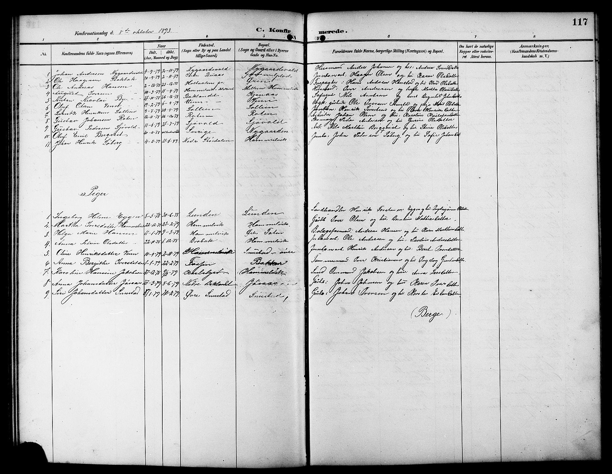 SAT, Ministerialprotokoller, klokkerbøker og fødselsregistre - Sør-Trøndelag, 617/L0431: Klokkerbok nr. 617C01, 1889-1910, s. 117