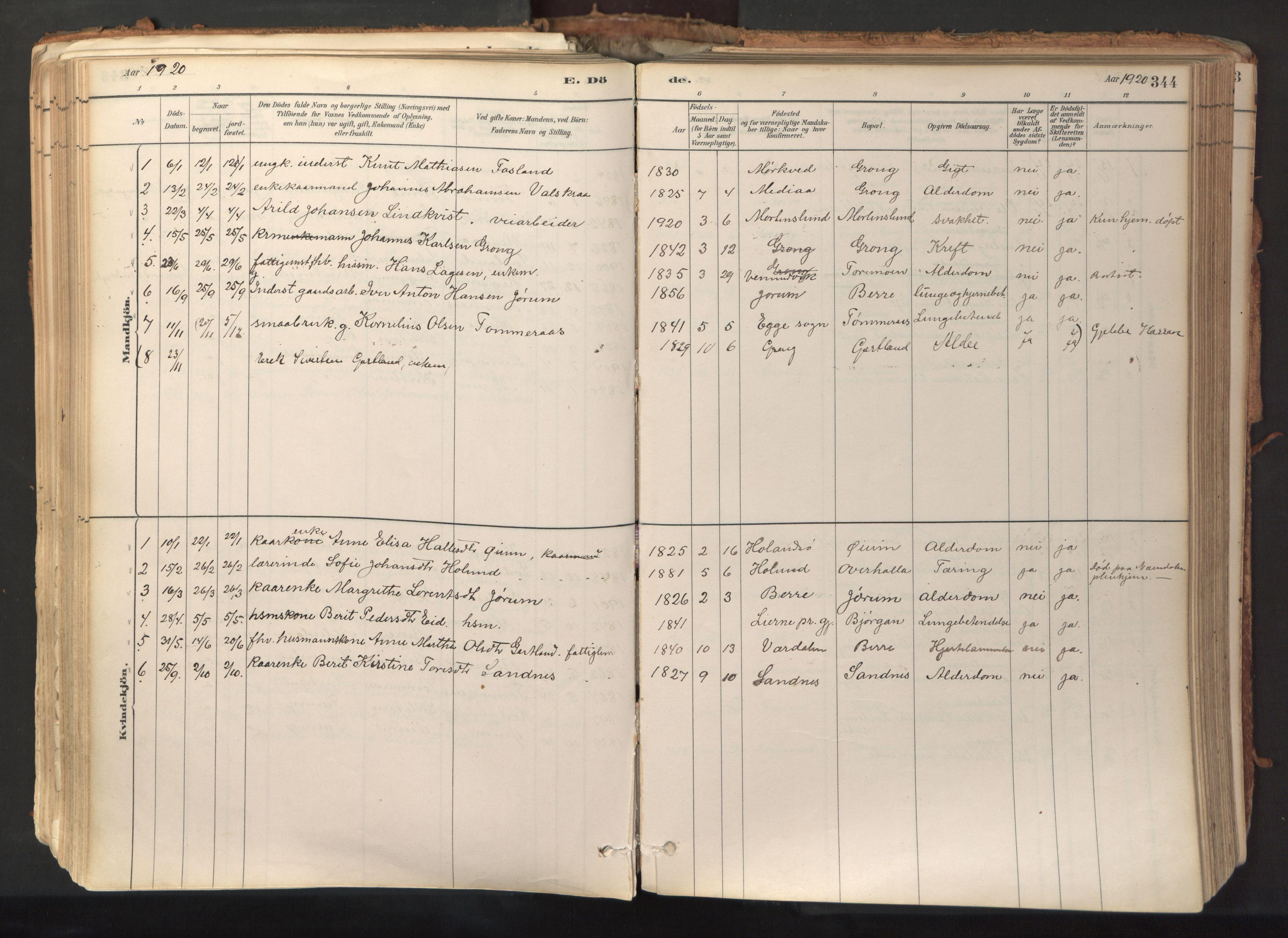 SAT, Ministerialprotokoller, klokkerbøker og fødselsregistre - Nord-Trøndelag, 758/L0519: Ministerialbok nr. 758A04, 1880-1926, s. 344