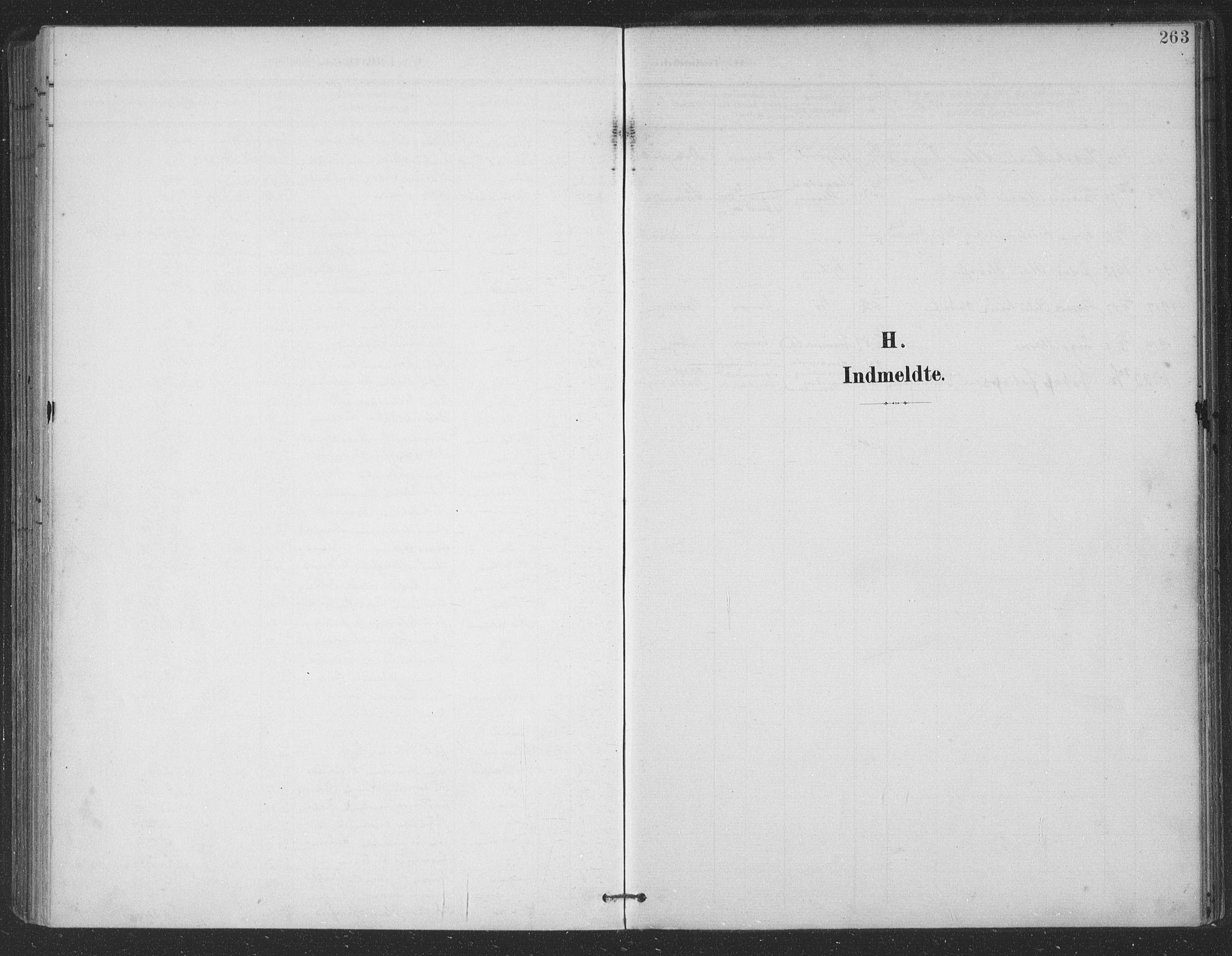 SAT, Ministerialprotokoller, klokkerbøker og fødselsregistre - Nordland, 863/L0899: Ministerialbok nr. 863A11, 1897-1906, s. 263
