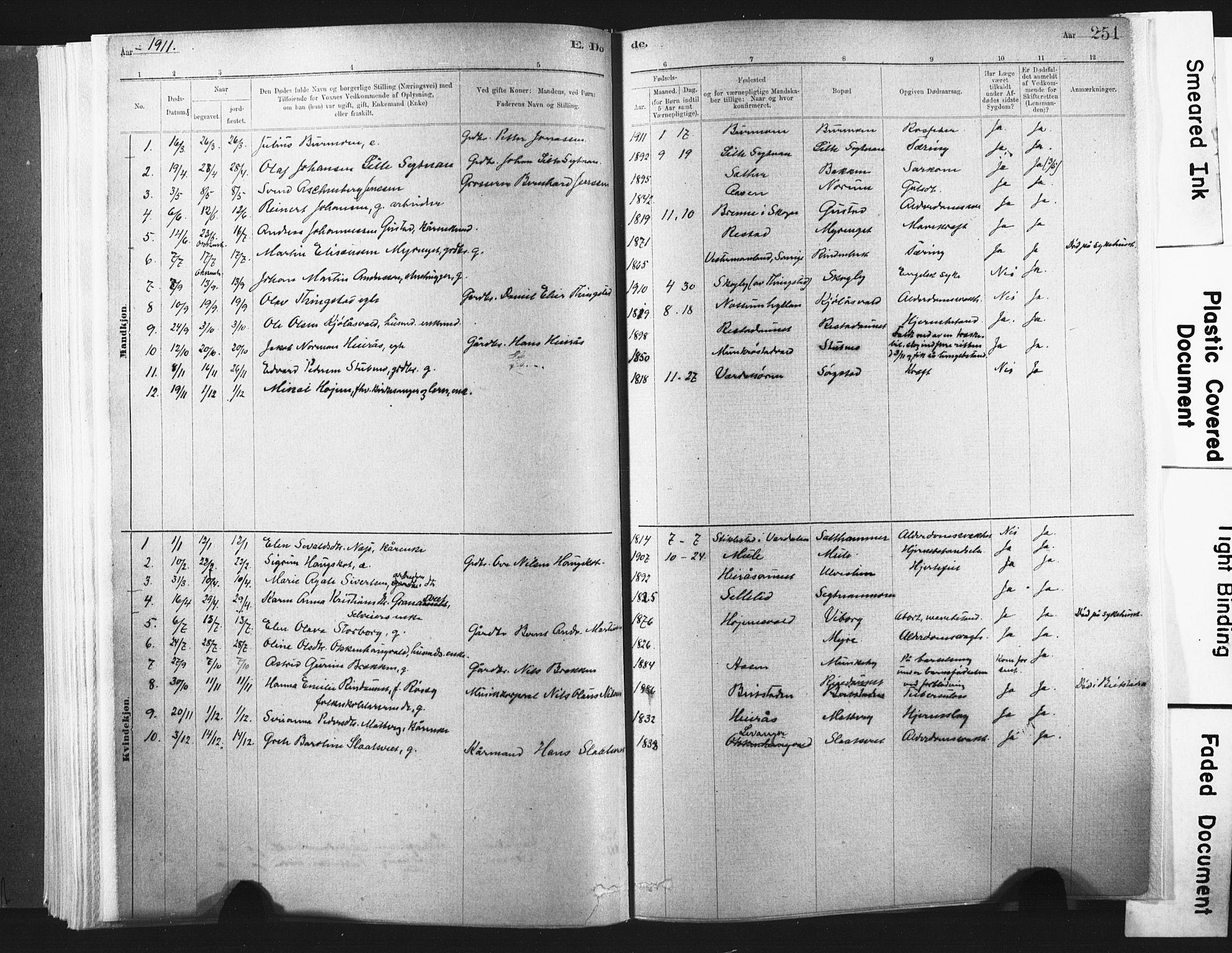 SAT, Ministerialprotokoller, klokkerbøker og fødselsregistre - Nord-Trøndelag, 721/L0207: Ministerialbok nr. 721A02, 1880-1911, s. 251