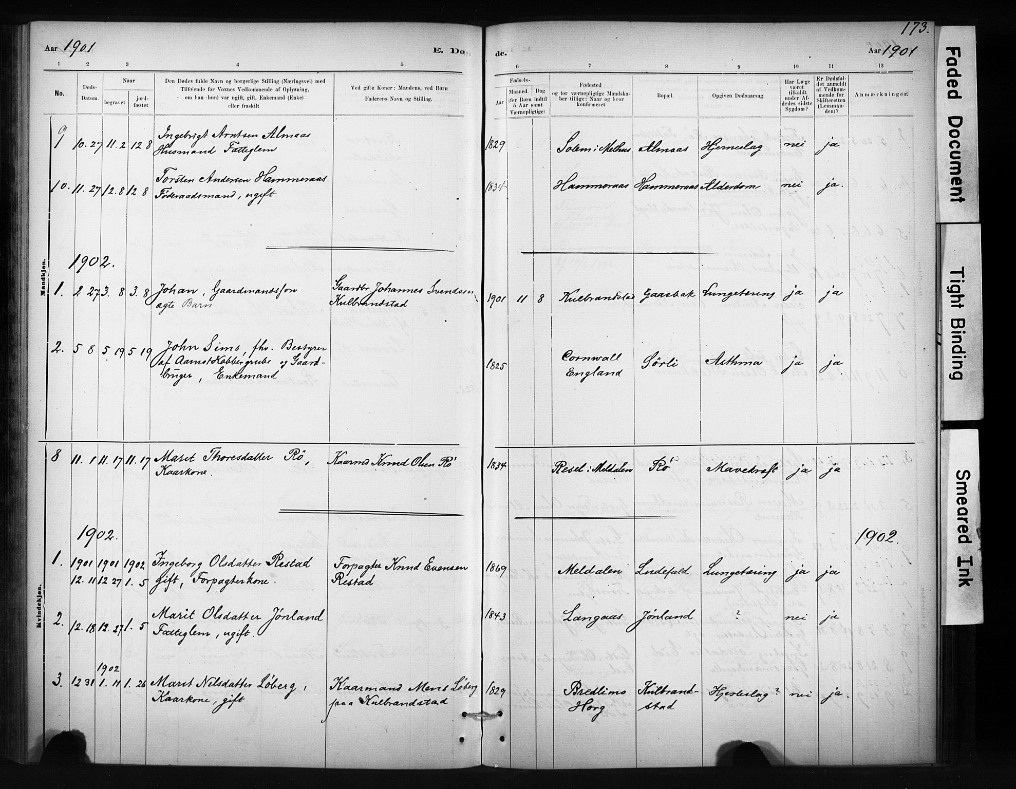 SAT, Ministerialprotokoller, klokkerbøker og fødselsregistre - Sør-Trøndelag, 694/L1127: Ministerialbok nr. 694A01, 1887-1905, s. 173