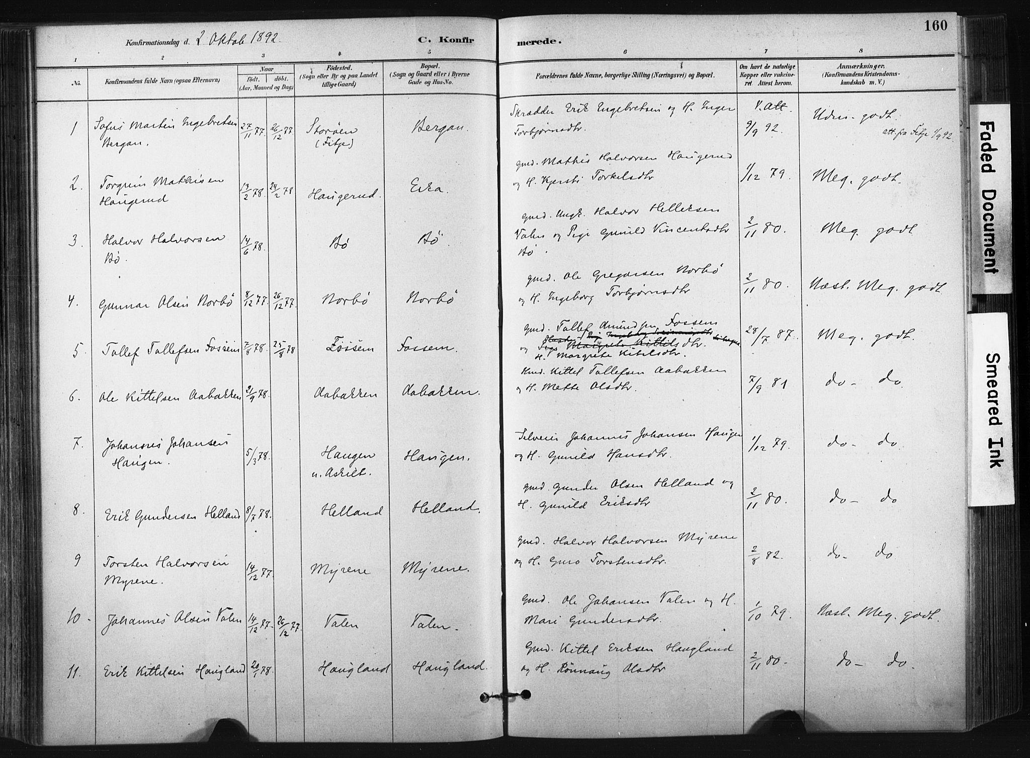 SAKO, Bø kirkebøker, F/Fa/L0010: Ministerialbok nr. 10, 1880-1892, s. 160