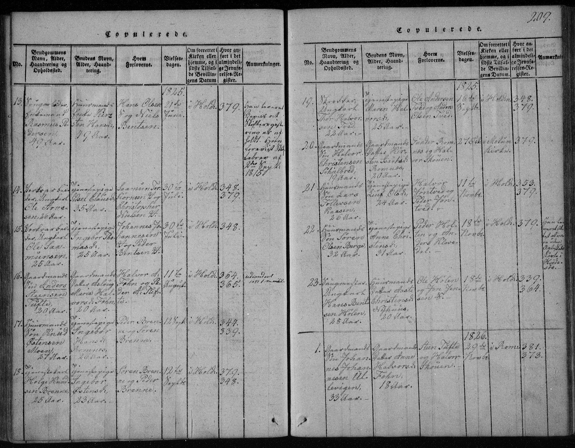 SAKO, Holla kirkebøker, F/Fa/L0003: Ministerialbok nr. 3, 1815-1830, s. 209
