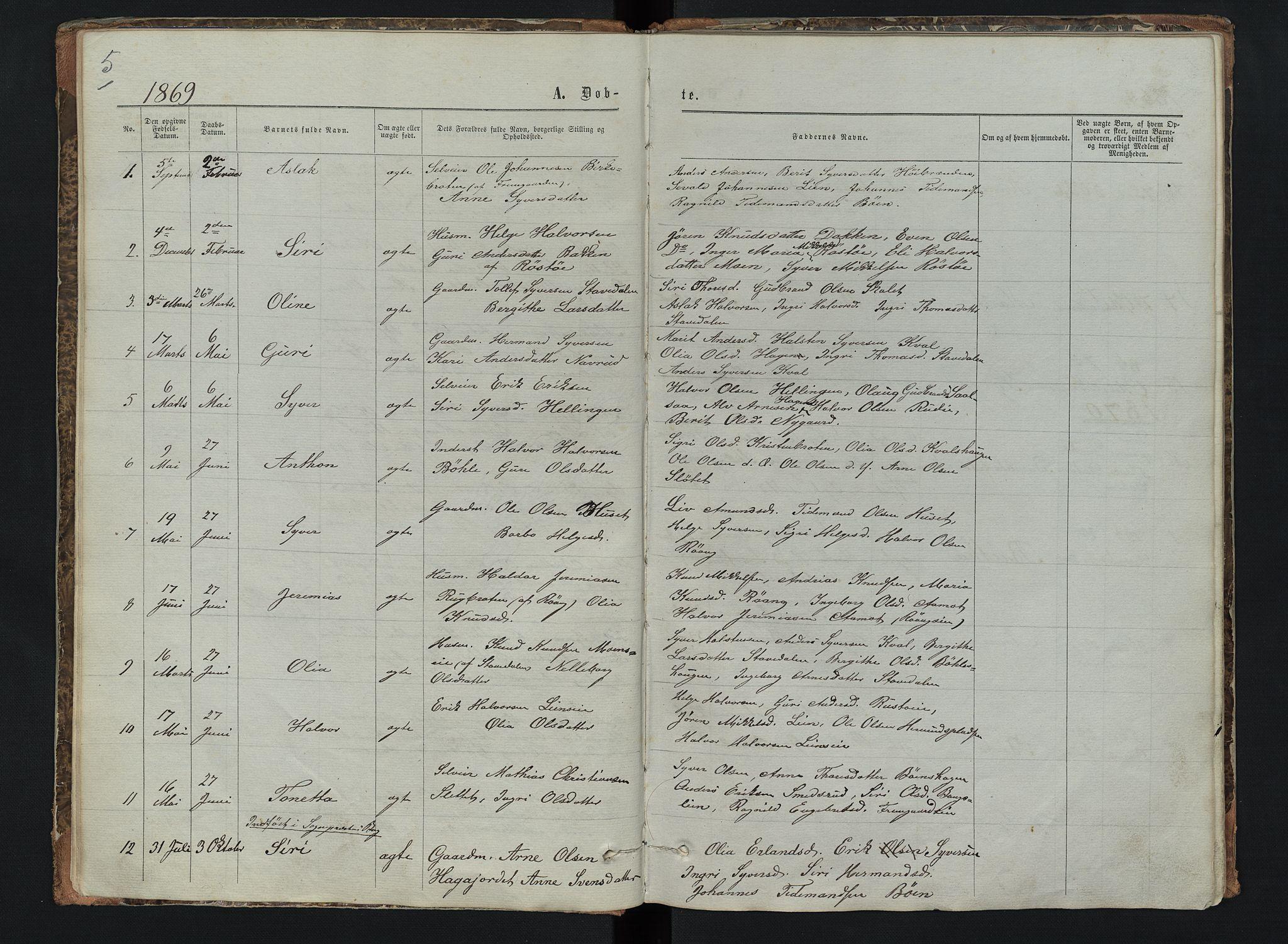 SAH, Sør-Aurdal prestekontor, Klokkerbok nr. 6, 1866-1893, s. 5