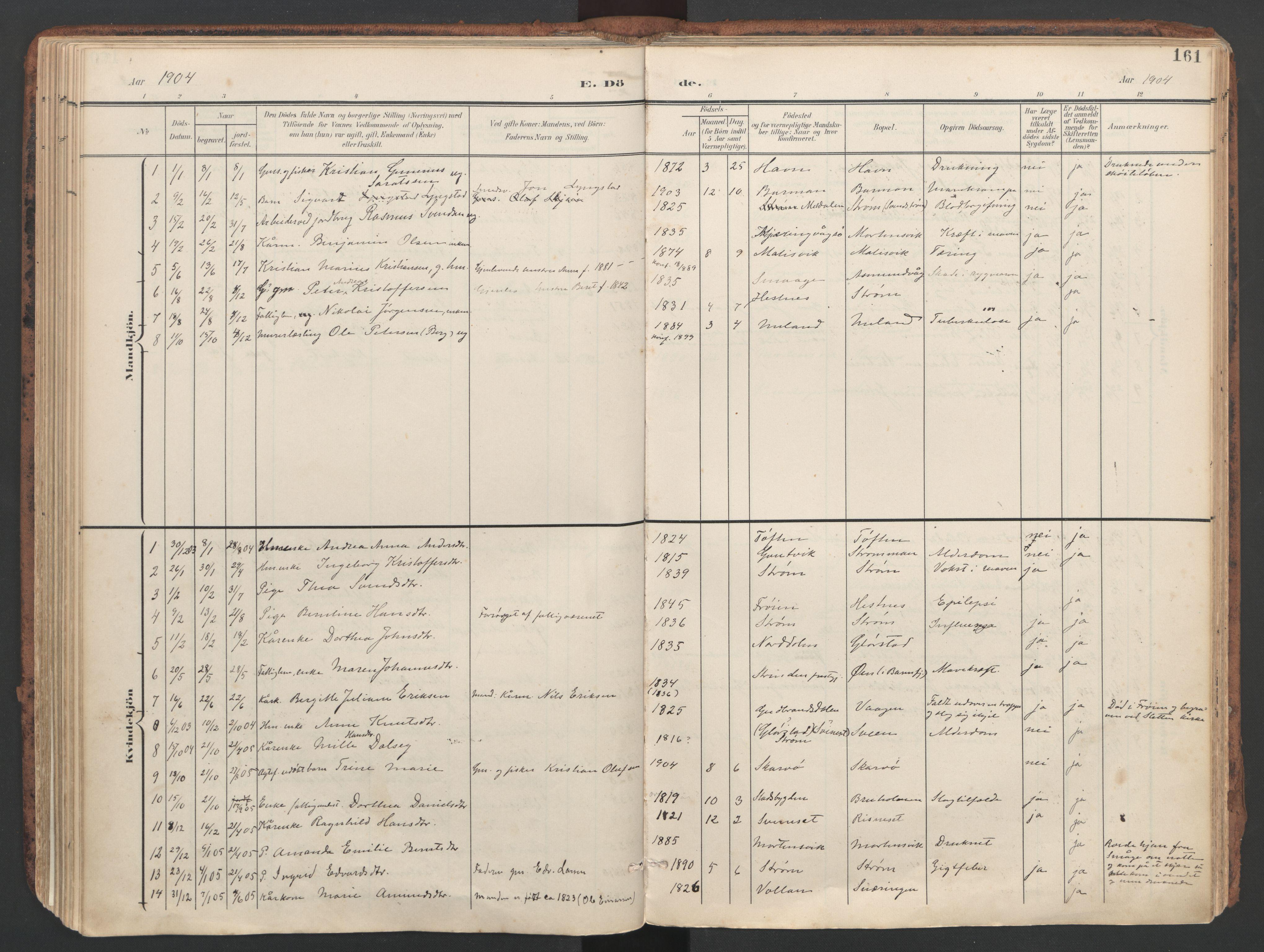 SAT, Ministerialprotokoller, klokkerbøker og fødselsregistre - Sør-Trøndelag, 634/L0537: Ministerialbok nr. 634A13, 1896-1922, s. 161