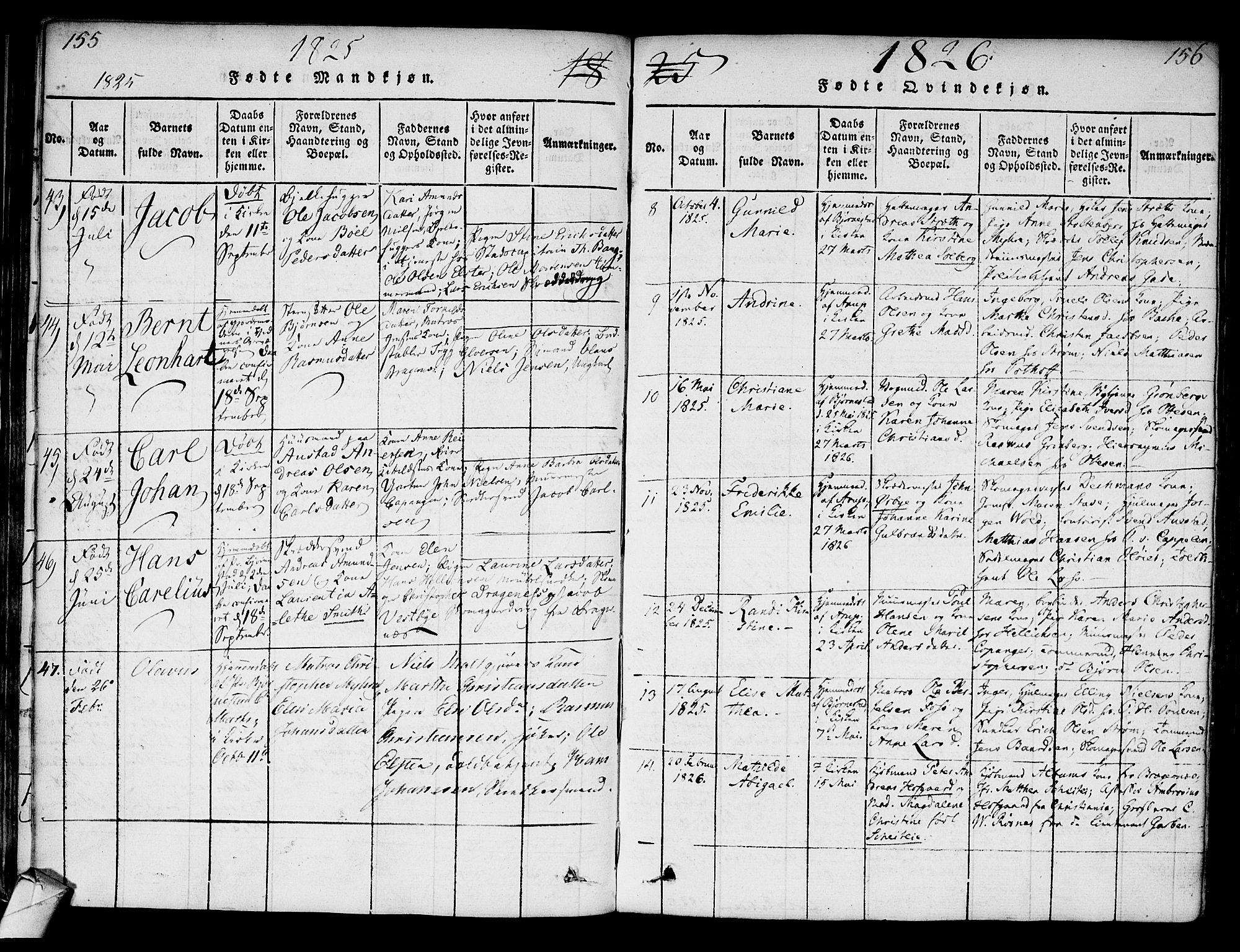 SAKO, Strømsø kirkebøker, F/Fa/L0011: Ministerialbok nr. I 11, 1815-1829, s. 155-156