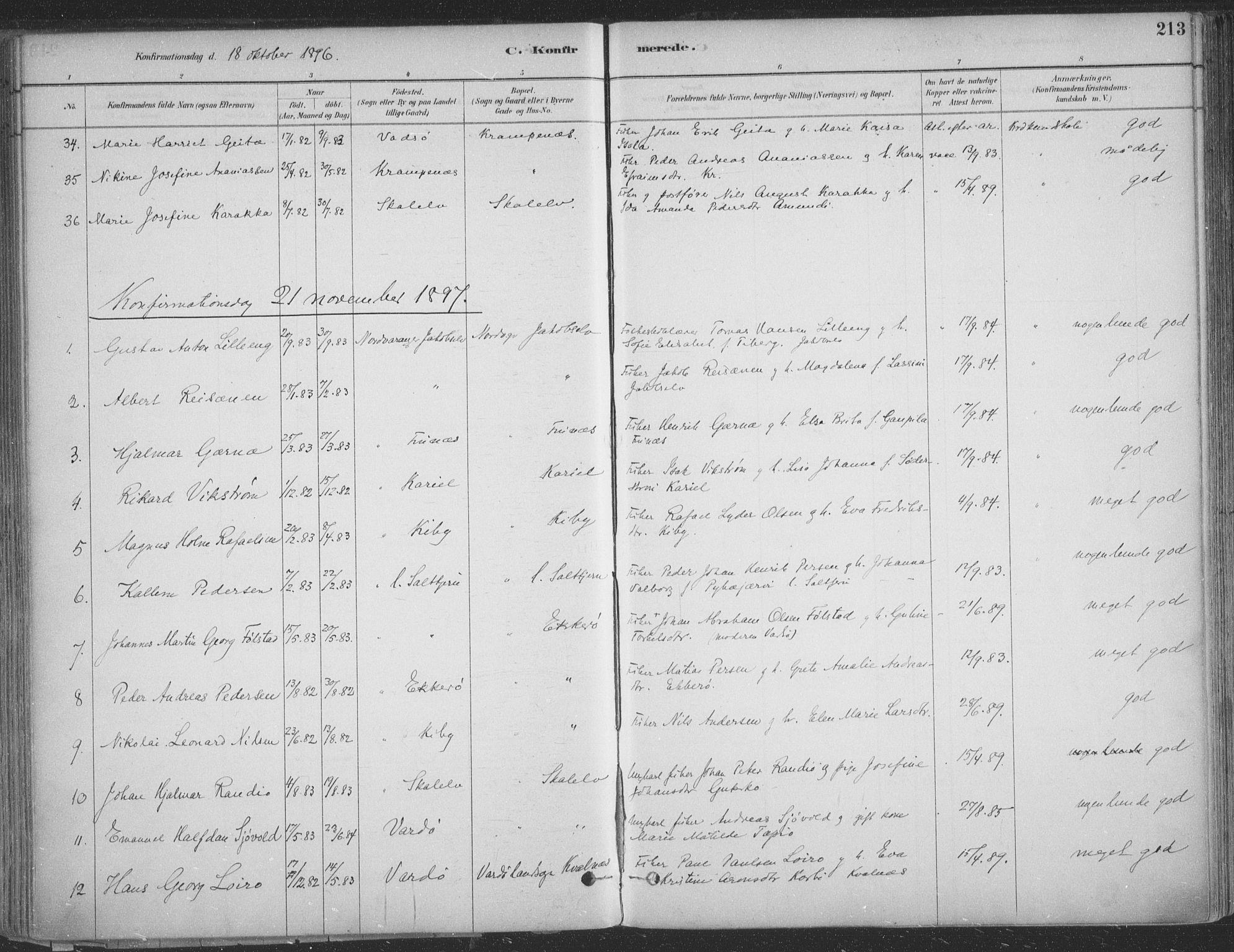 SATØ, Vadsø sokneprestkontor, H/Ha/L0009kirke: Ministerialbok nr. 9, 1881-1917, s. 213